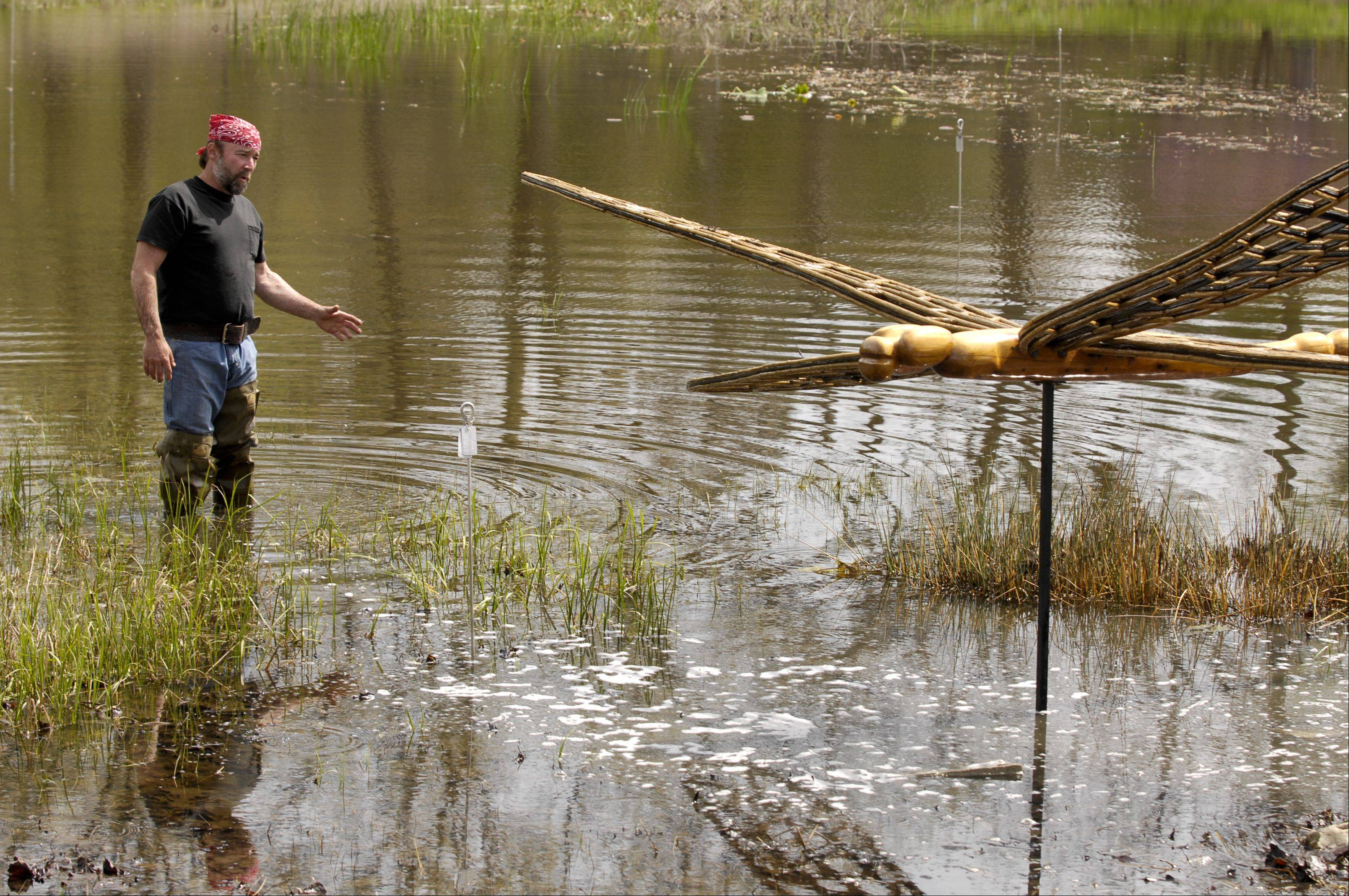 Artist David Rogers checks the placement of a dragonfly sculpture as he sets up his exhibition at the Morton Arboretum.