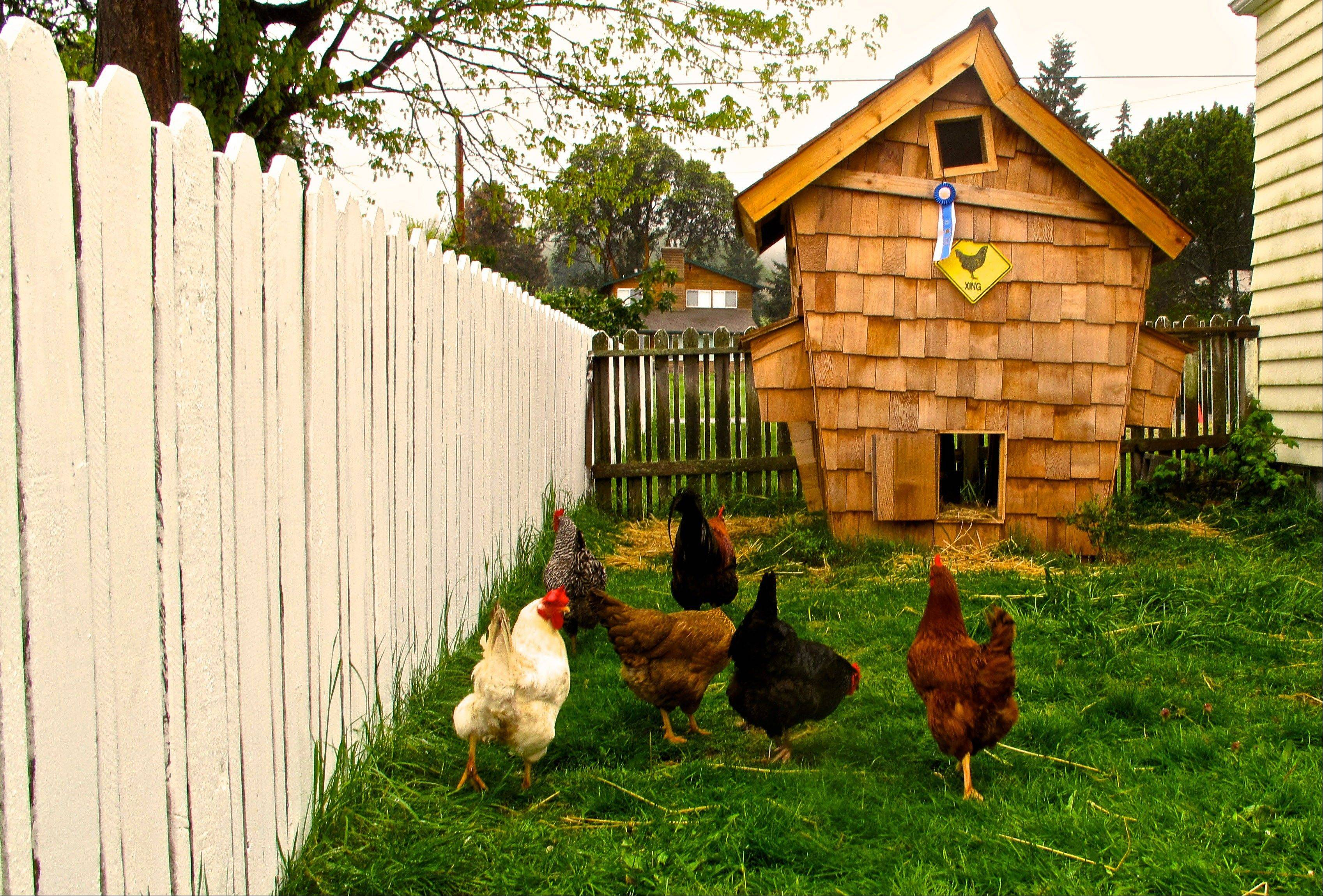 "A ""Crooked Coop"" in Clinton, Wash., is reminiscent of a fairy tale house of Dr. Seuss. Designer chicken coops are becoming a new kind of yard art."
