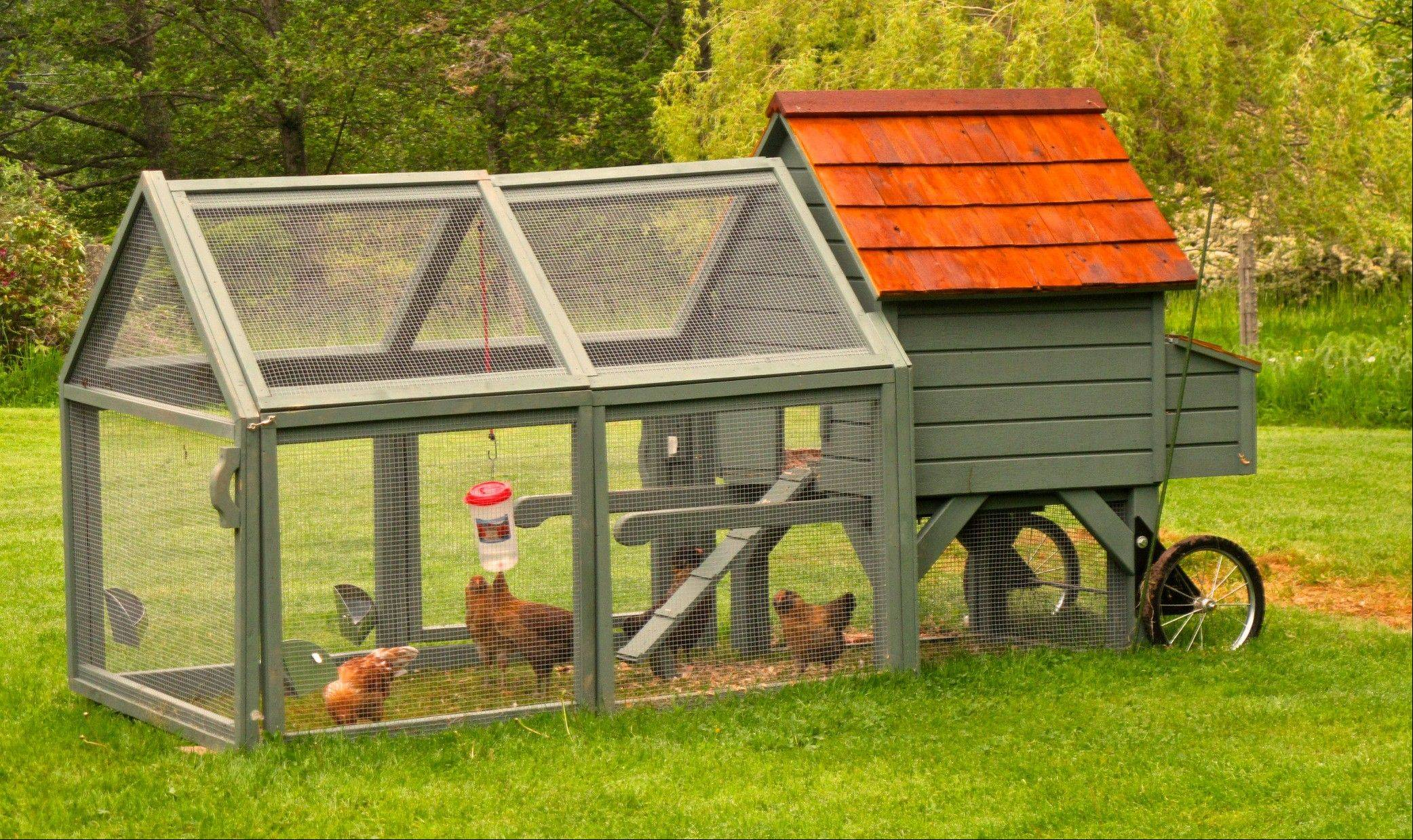 A movable chicken coop sold by Williams-Sonoma is built on wheels, which makes it easy to maneuver around a lawn providing fresh grass for the small, foraging flock.