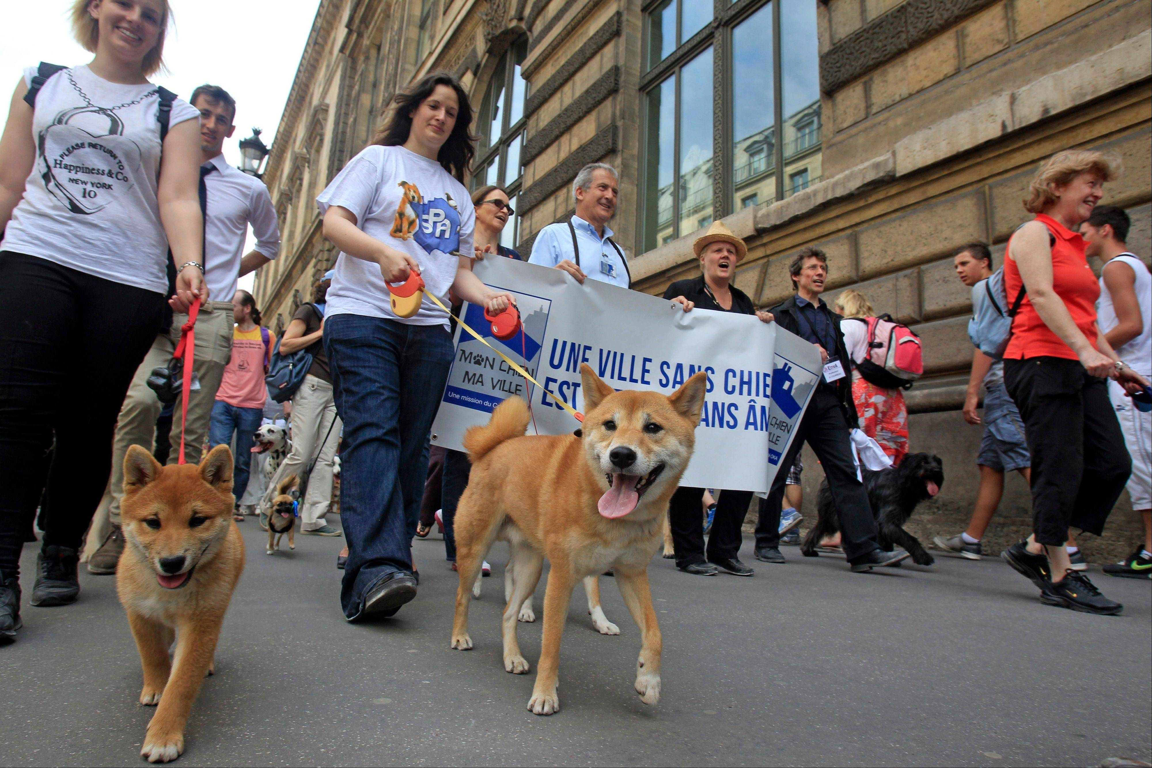 Dog owners march Saturday toward the Tuileries Gardens, in Paris.