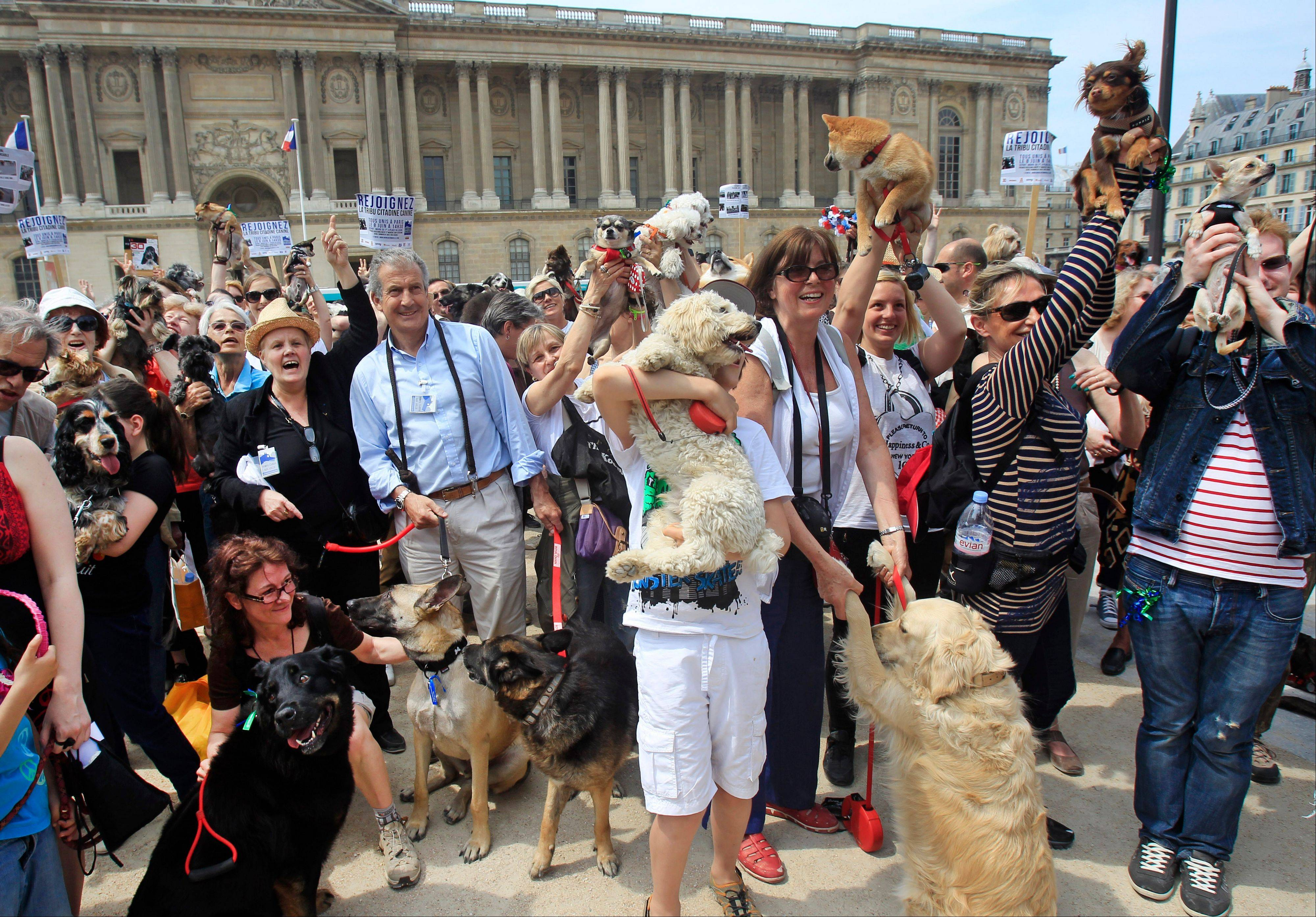 Dog owners gather behind the Louvre Museum Saturday in Paris prior to a march.