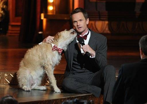 "Neil Patrick Harris gets a little love from Sunny the dog introducing the cast of ""A Christmas Story."""