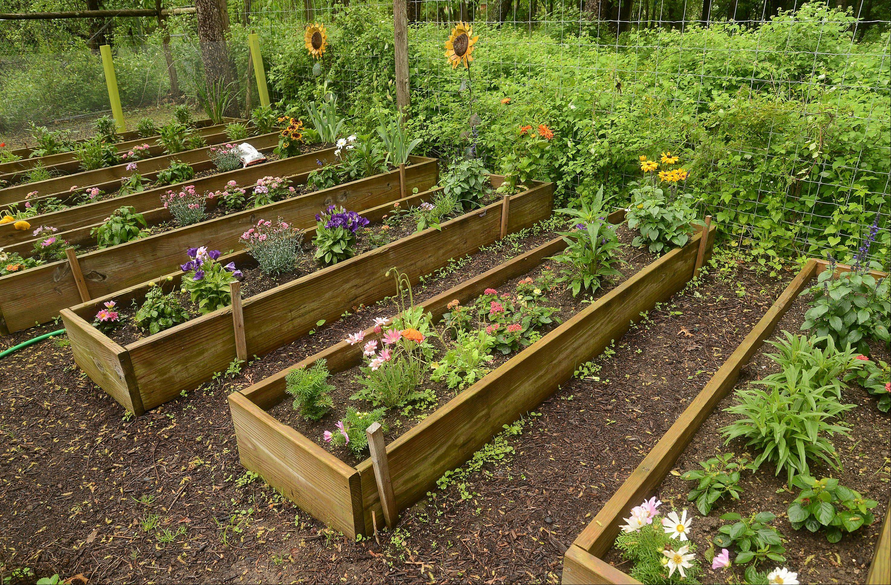 The cutting garden is one area the homeowner cares for herself.