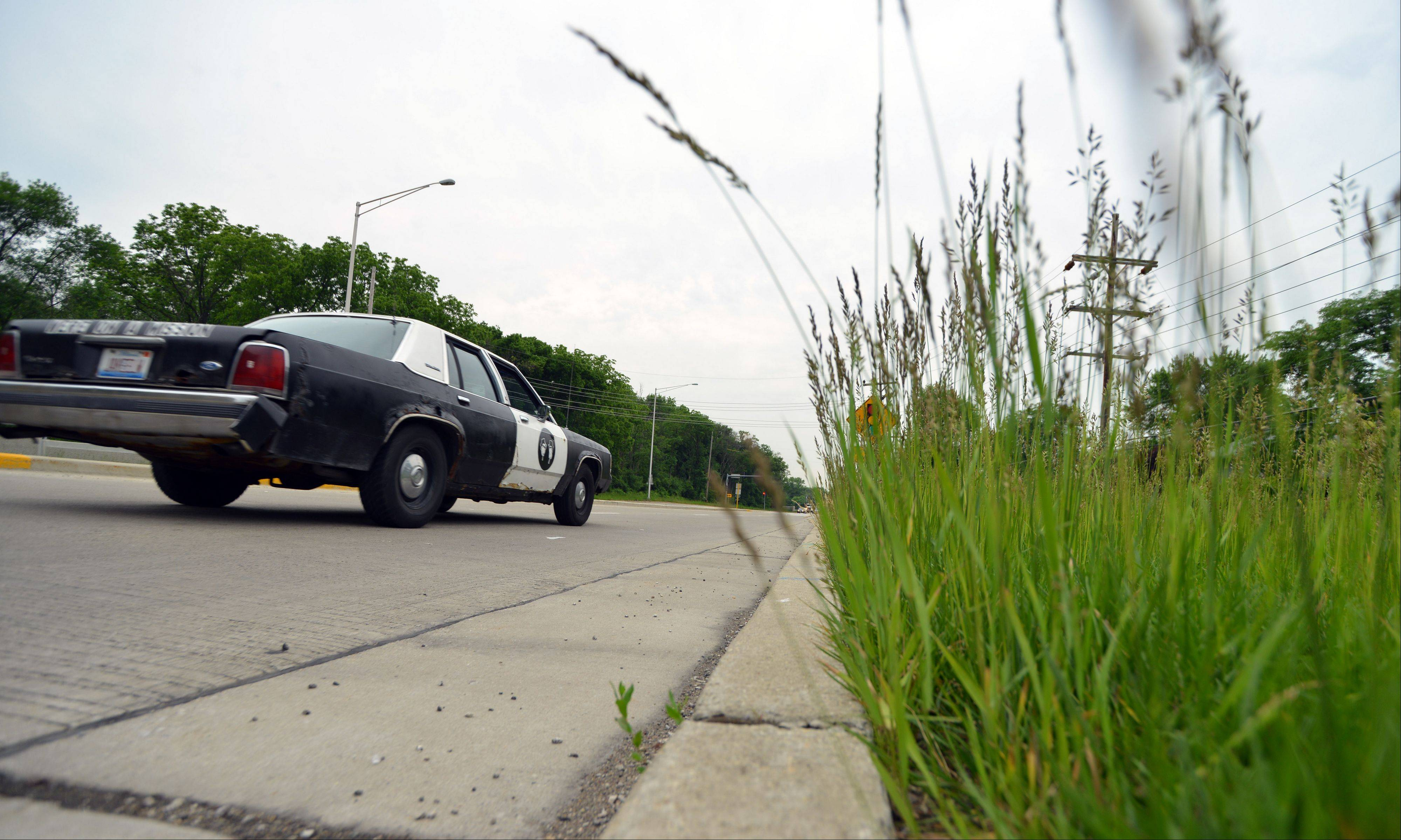 Grass near the intersection of River Road and Milwaukee Avenue in Prospect Heights sees infrequent mowing.