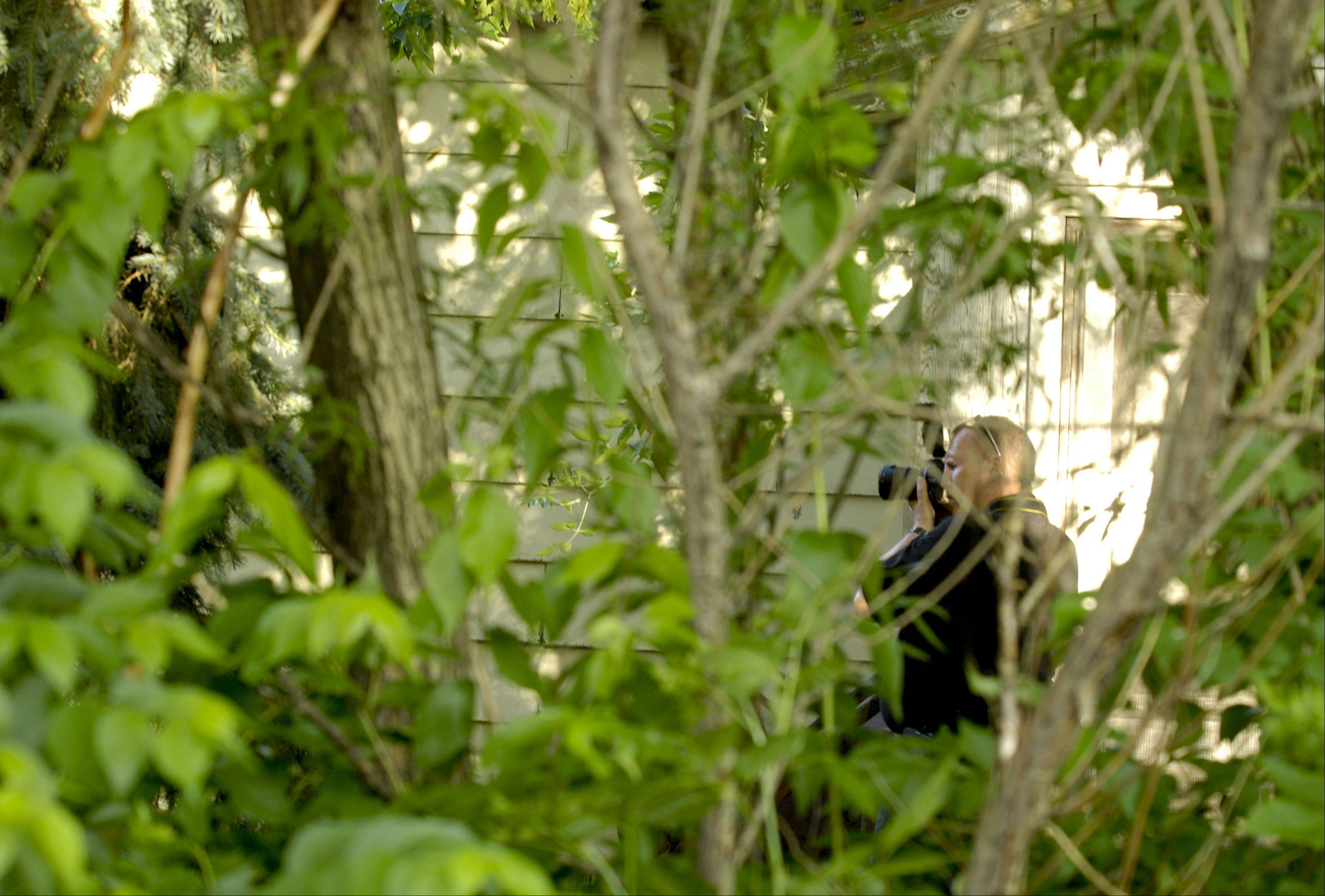 A police investigator takes photographs Tuesday in the backyard of a home on Oldfield Road in DuPage County where four members of a family were found dead.
