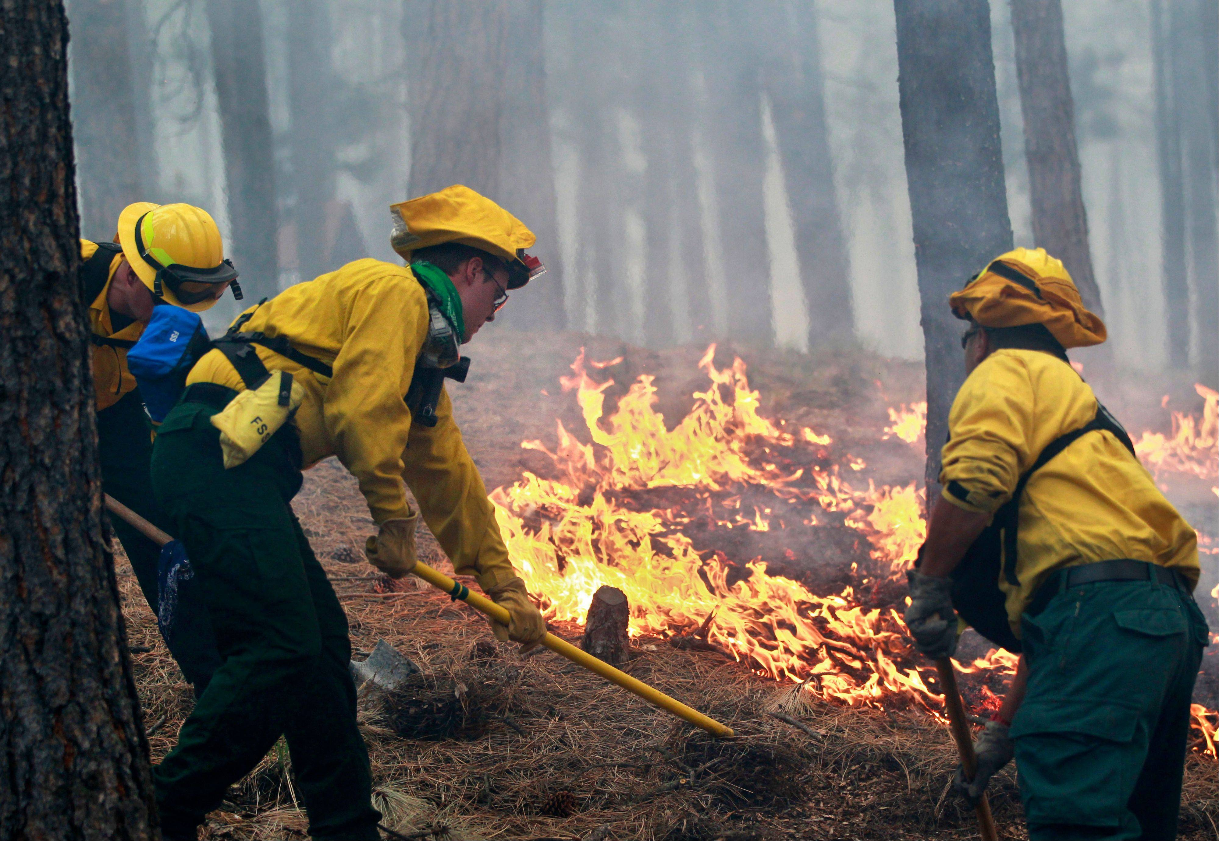 Black Forest Fire Dept. officers burn off natural ground fuel in an evacuated neighborhood, prepping the area for the encroachment of the wildfire in the Black Forest area north of Colorado Springs, Colo., on Wednesday, June 12, 2013. The fire has destroyed at least 360 homes, making it the most destructive in state history.