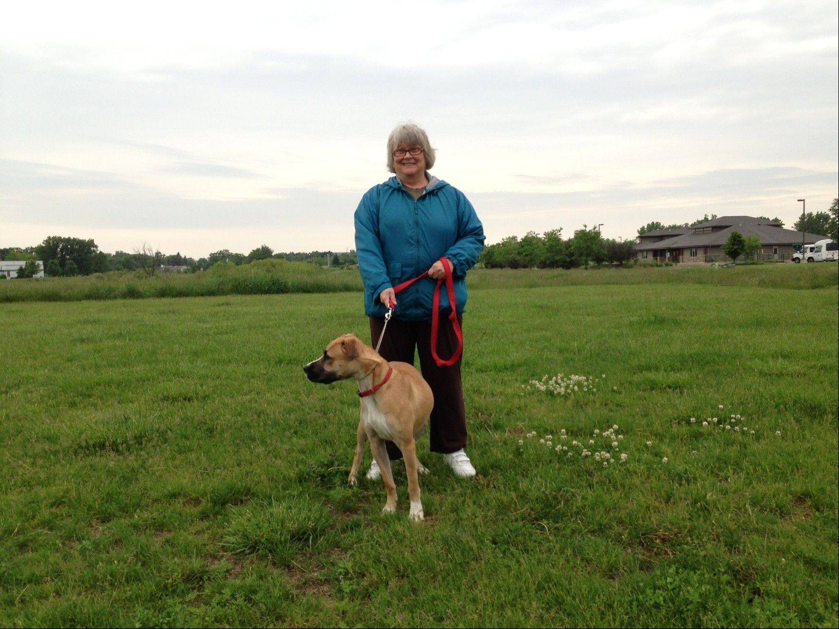 Helping Paws Animal Shelter needs volunteers, like Lynne Geuzendam walking Bounder, to help care for the animals. Volunteer orientations will be held June 18 and July 7.