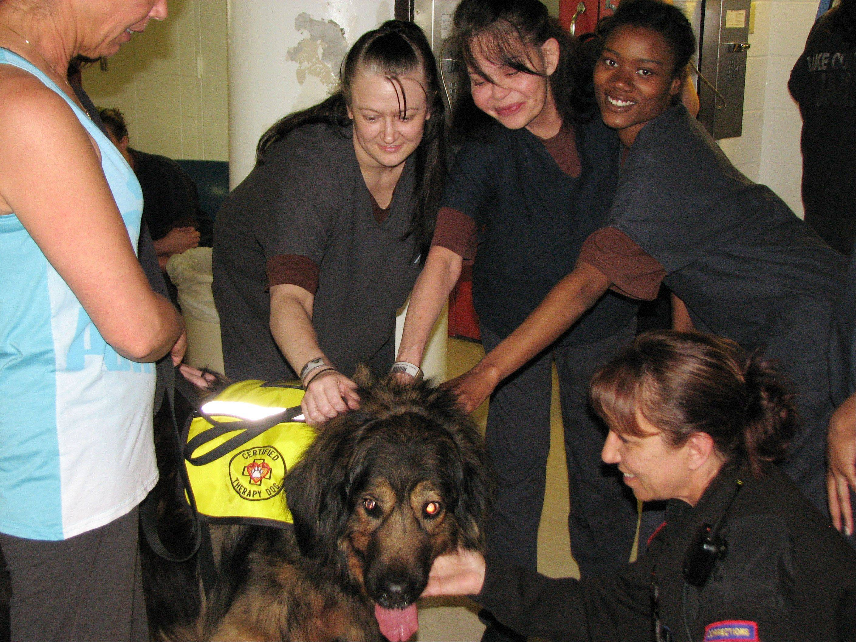 Courtesy of Lake County Sheriff�s OfficeSusan Knaack's therapy dog Kubla Khan gets some attention at the Lake County Community Based Corrections Center (CBCC).