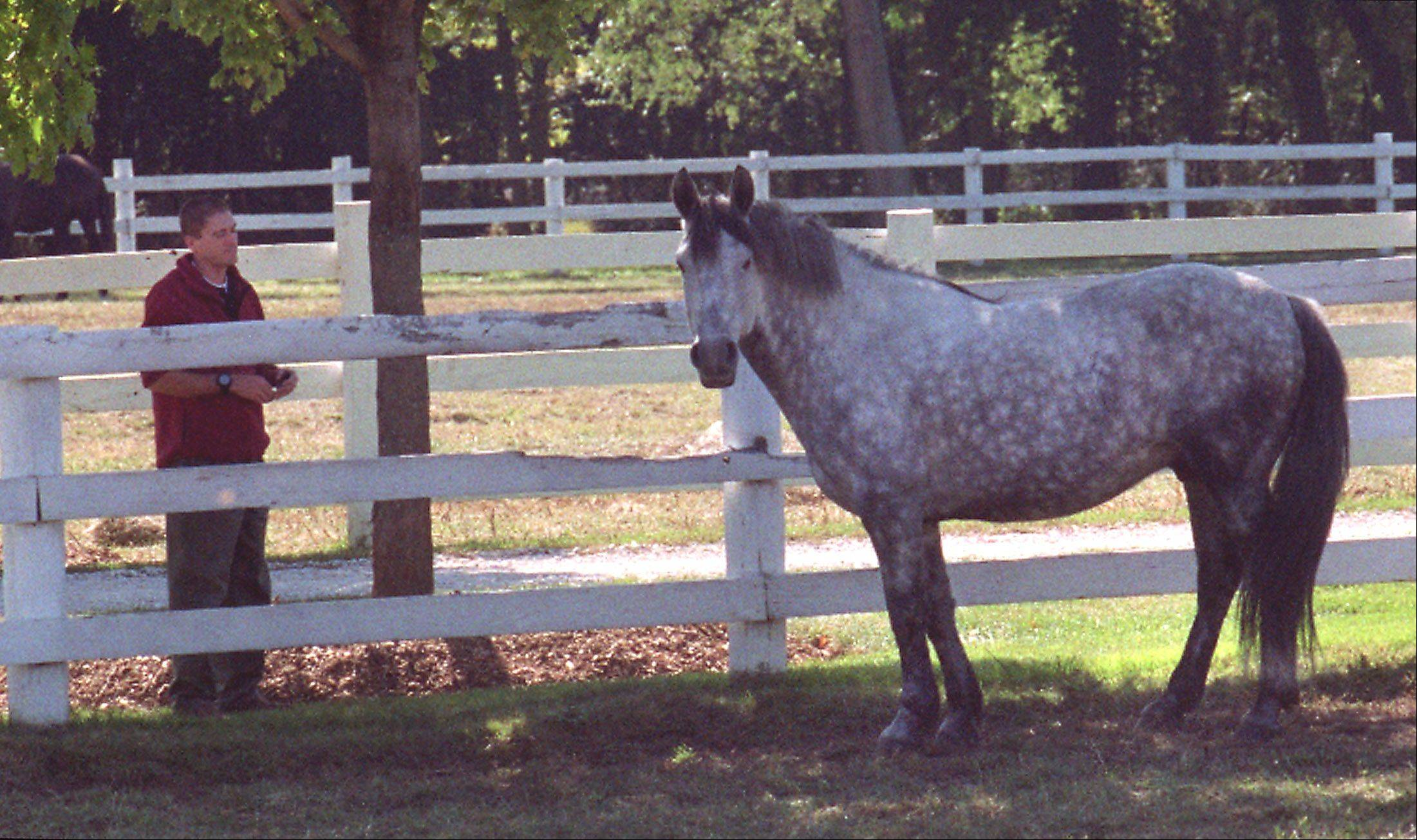 DuPage forest preserve accepts final report on Danada horses