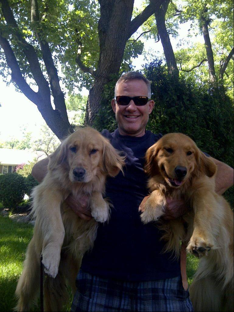 Bailee, left, was reunited Tuesday with owner Mike Gerdes and fellow golden retriever Kismet.
