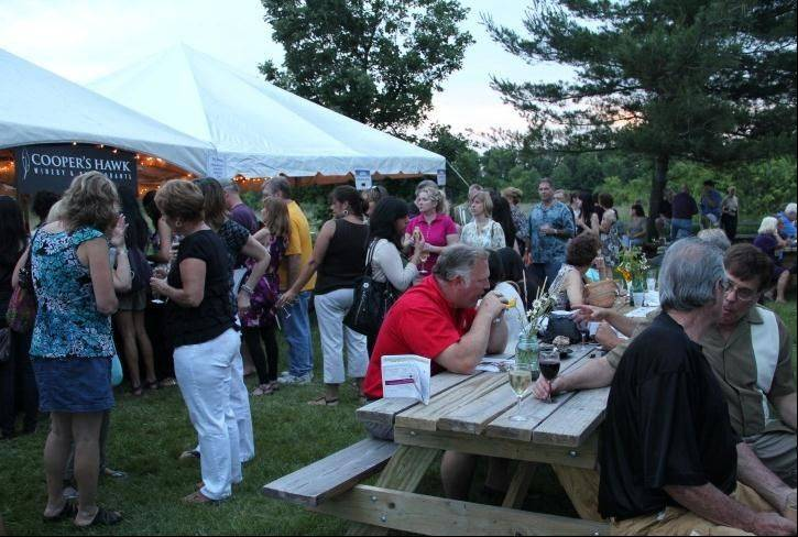 Beer and wine aficionados relax and chat at the Solstice Hop and Vine Fest.
