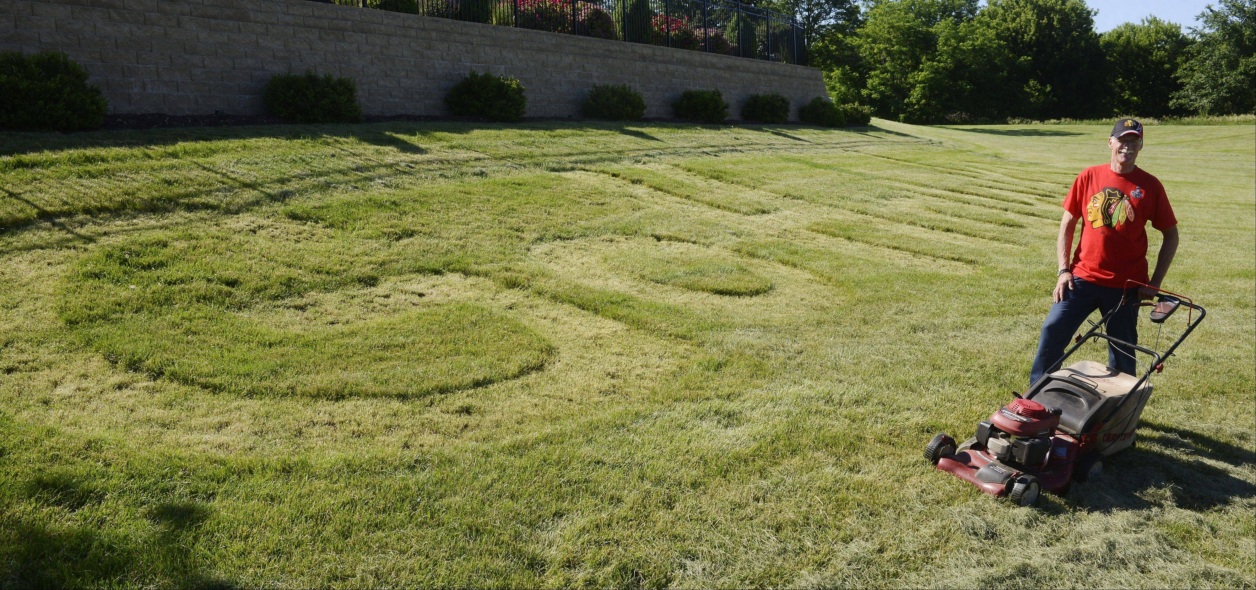 "Mike Ehrhardt of Schaumburg has mowed ""Go Hawks"" on a section of grass behind his Schaumburg home."