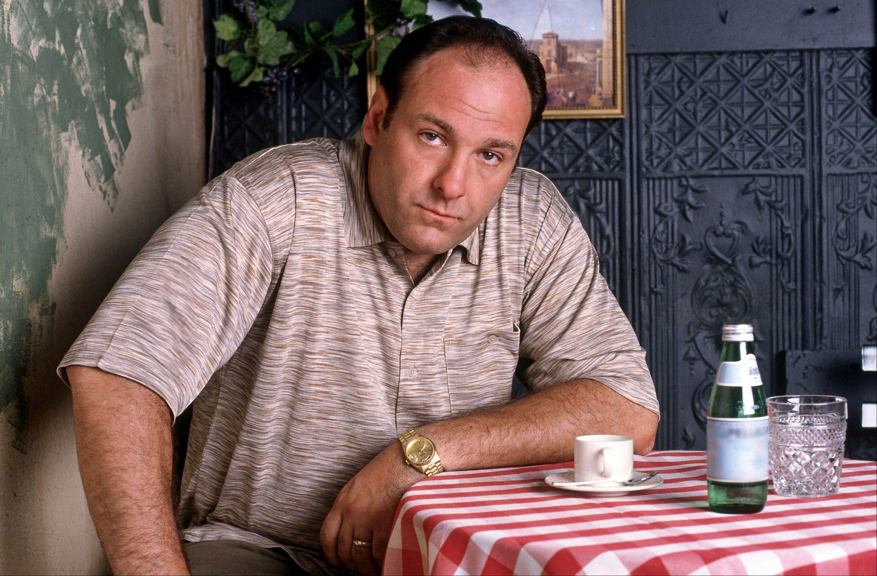 "James Gandolfini played mob boss Tony Soprano in HBO's ""The Sopranos."""