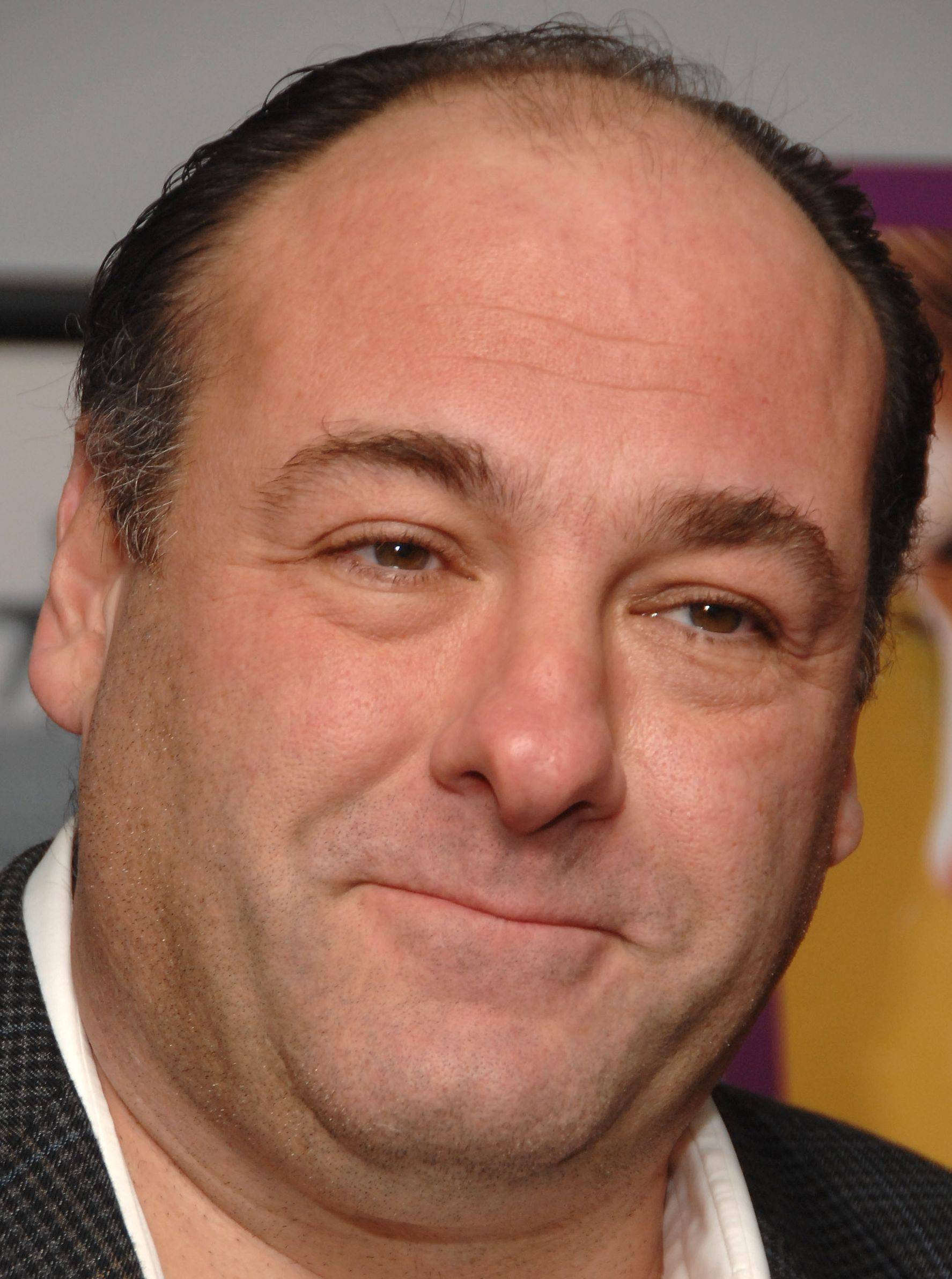 James Gandolfini won three Emmy Awards for his role as Tony Soprano.