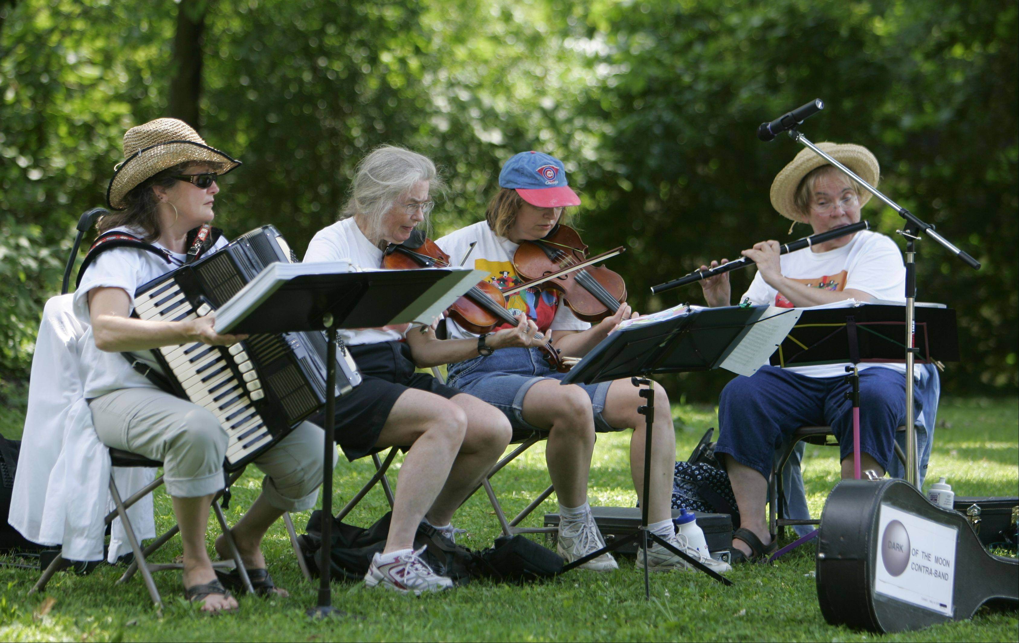 Nordic musical groups will entertain at the eighth annual Scandinavian Midsommar Festival at Vasa Park in South Elgin.