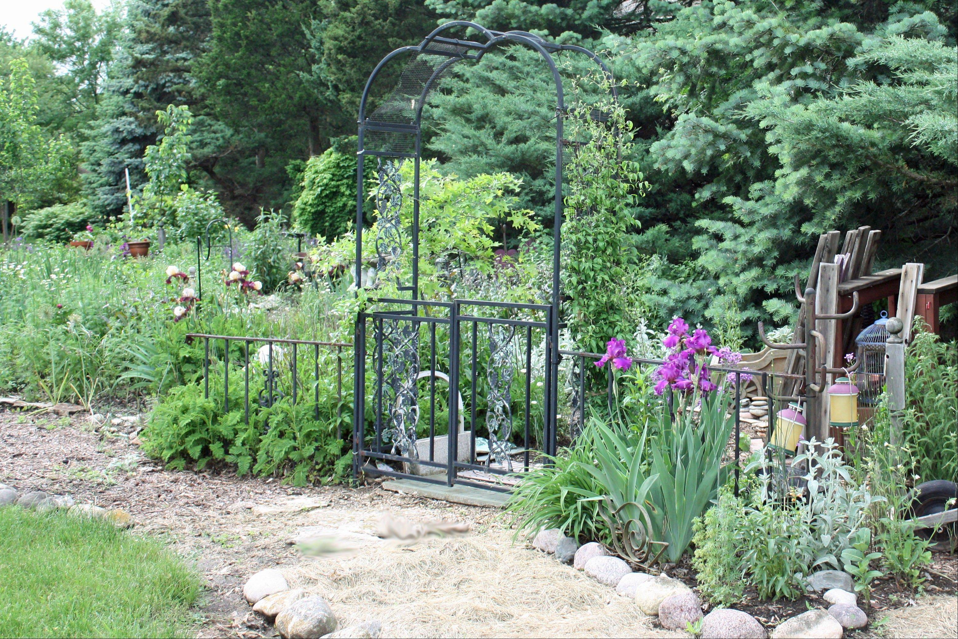 Among the interesting re-purposed finds in the Buehlers' garden is a metal coat rack on the far right with small colorful watering cans hanging from it. The metal garden gate invites visitors to the Buehler garden.
