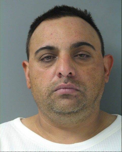 Probation for man charged with fleeing Schaumburg police