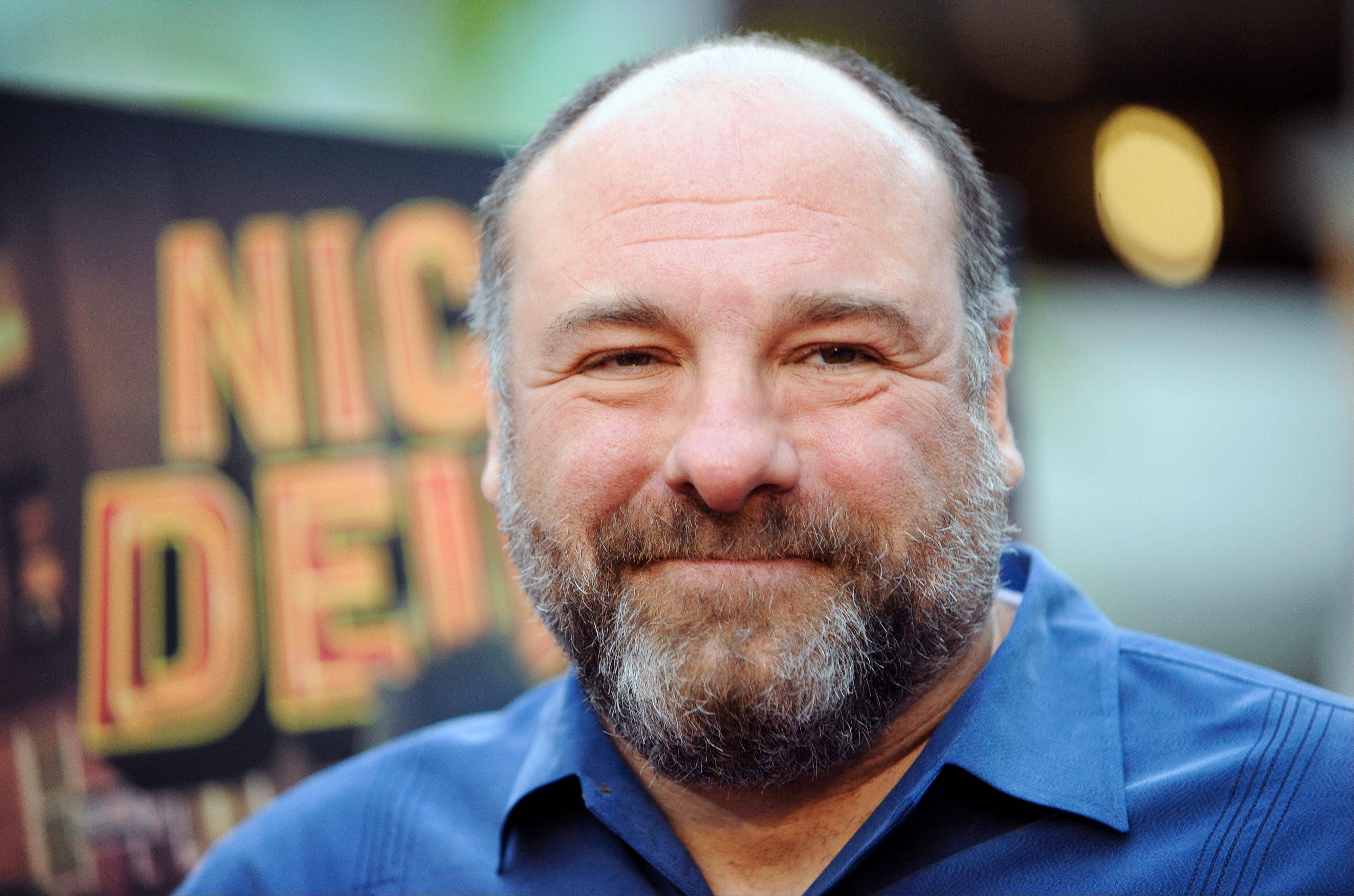 Actor James Gandolfini, who died Wednesday, had a number of projects in the works.