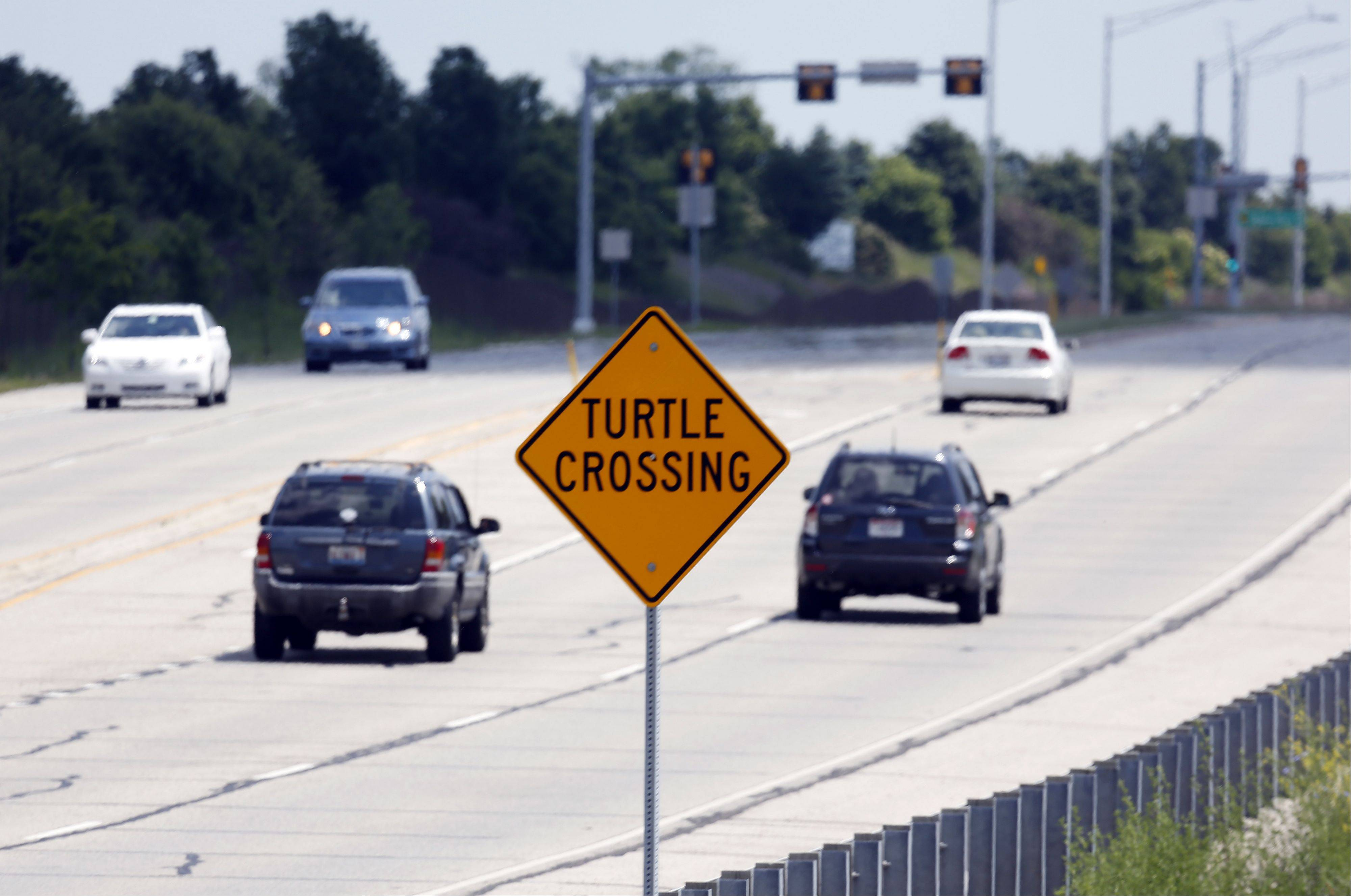 A sign on the border of Lake in the Hills and Algonquin along Algonquin Road, just west of Randall Road, warns of the large number of turtles on the roads.