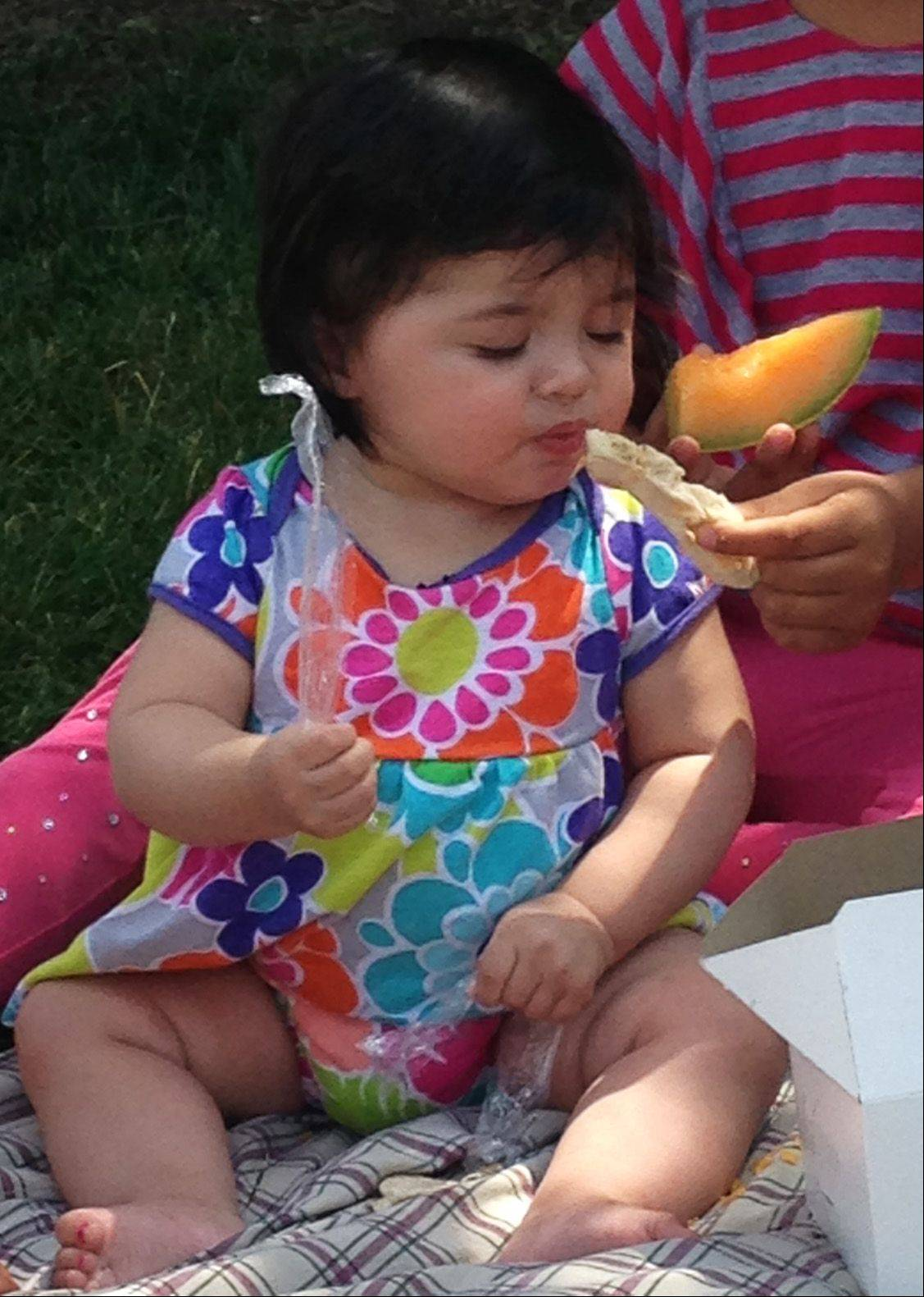Yessica Lopez, 8 months, enjoys a snack Wednesday during the free summer lunch program at Cornerstone Park in Elgin. The lunches are donated by the Northern Illinois Food Bank.