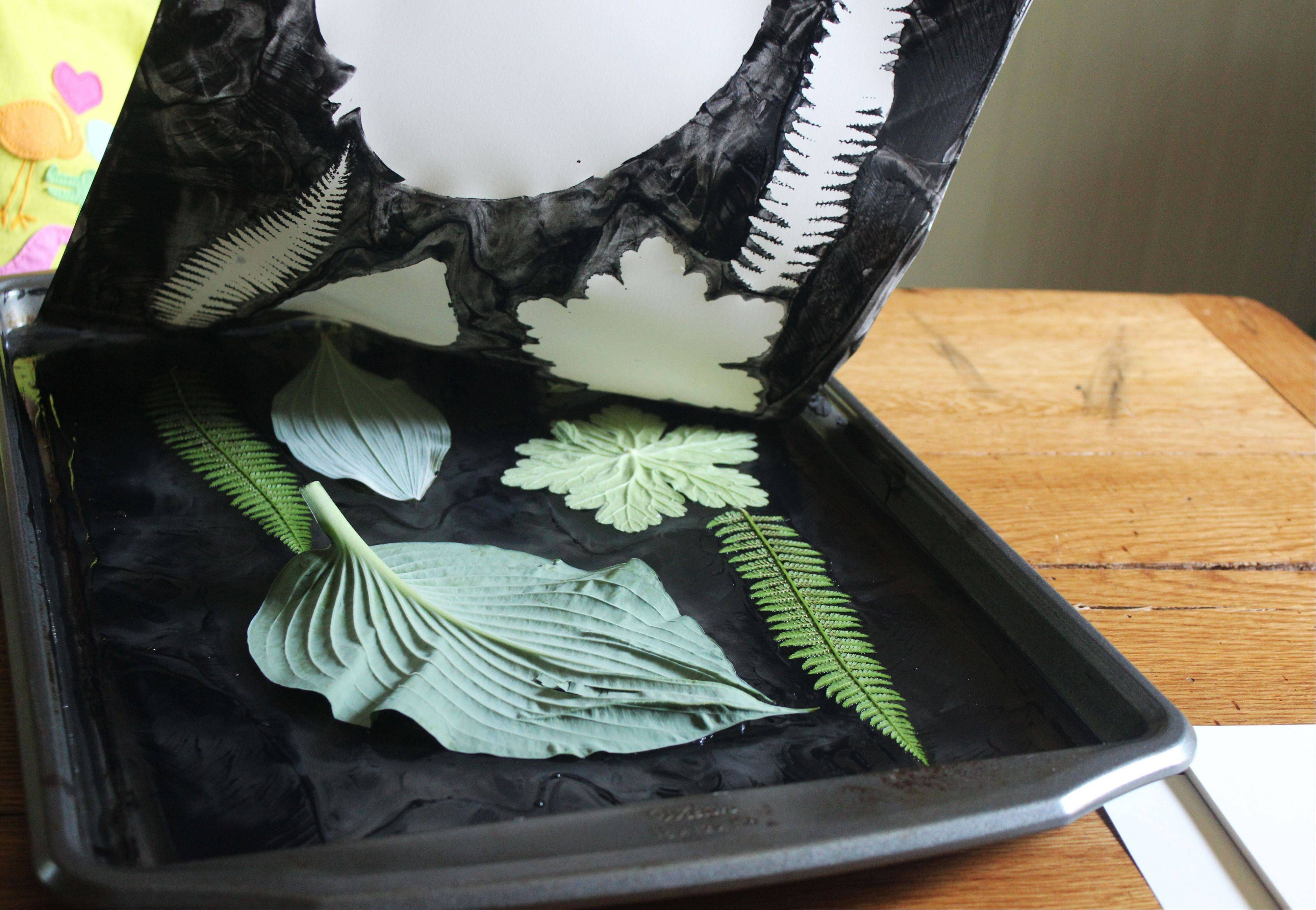 "Paper is carefully peeled away to reveal ""negative"" leaves in the print by Kristen Sutcliffe as shown here. Gelatin printing is a low-tech craft that uses simple ingredients and tools."