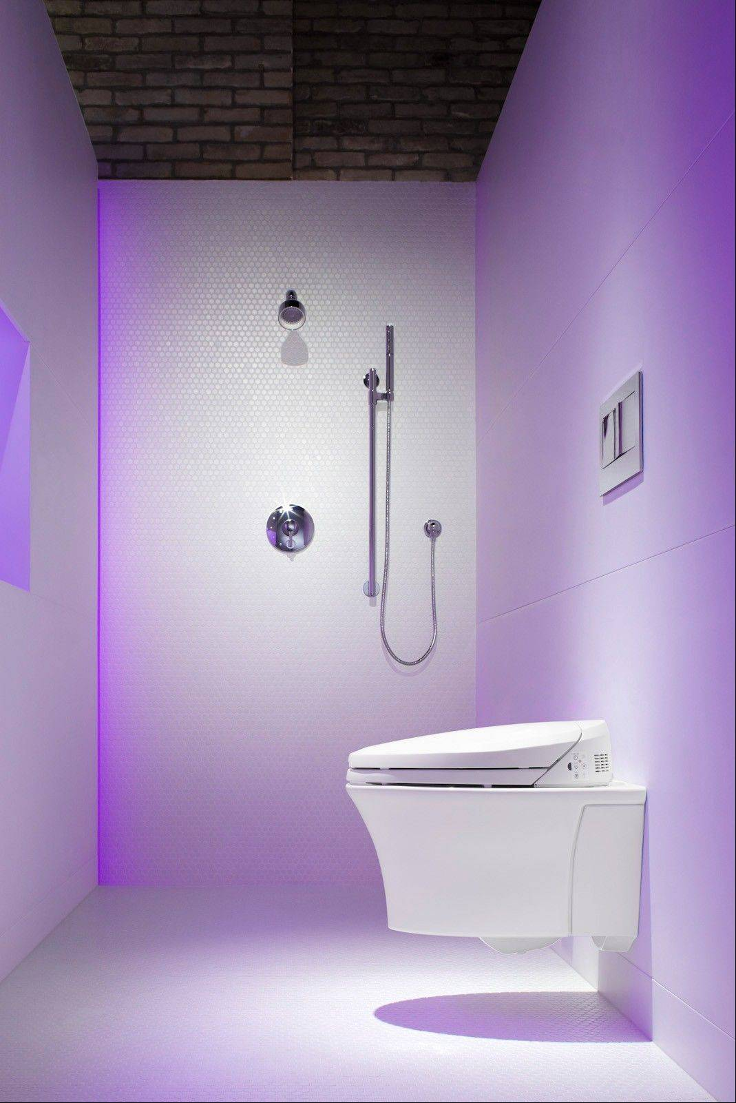 A wall-hung residential toilet with a recessed water tank will save space in a small bathroom.
