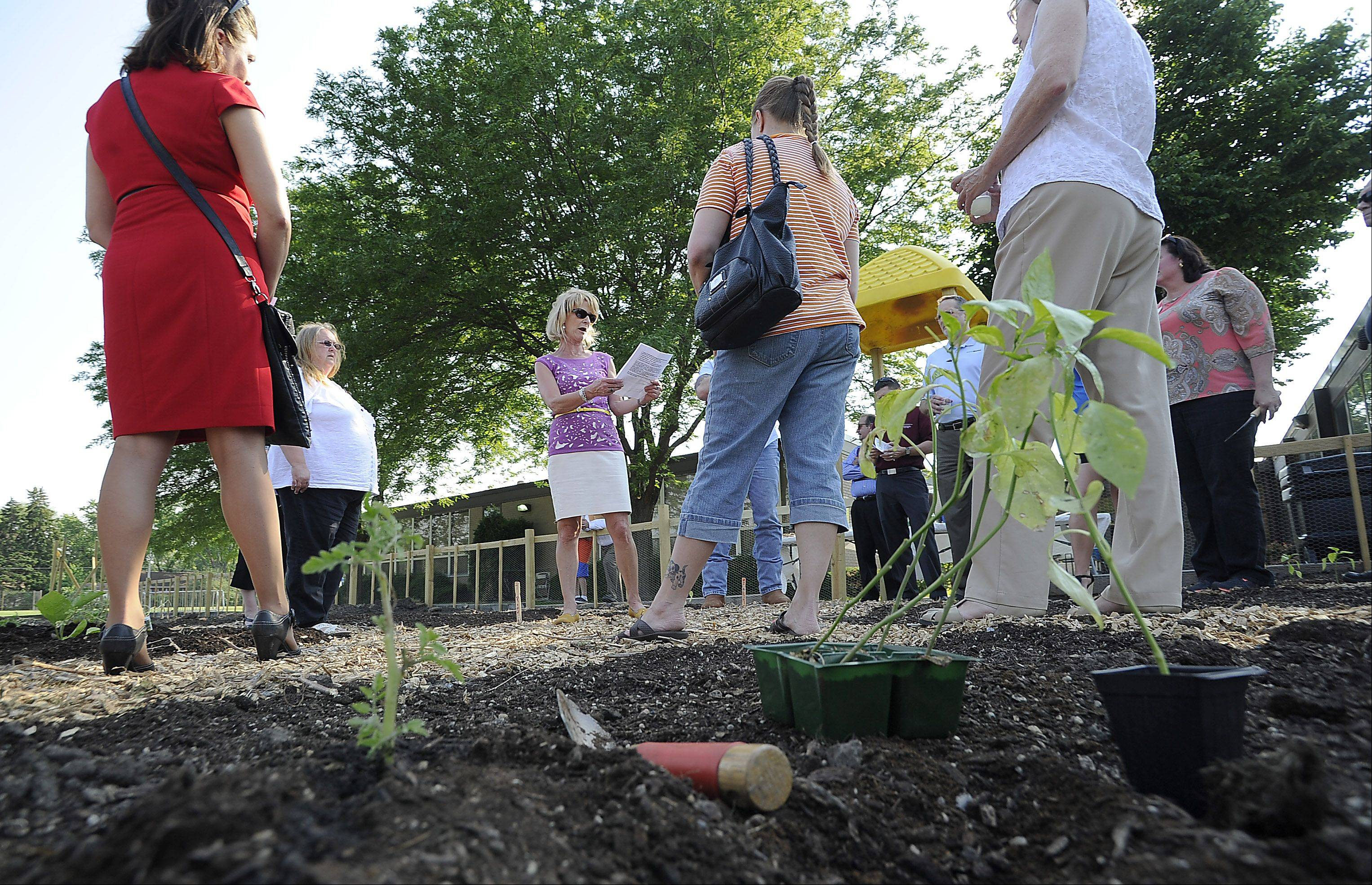Kyndl Schuster, center, assistance superintendent for business services for District 26 River Trails, speaks to others at their After-Hours Networking Event at their new community and school garden at Euclid Elementary School on Thursday.