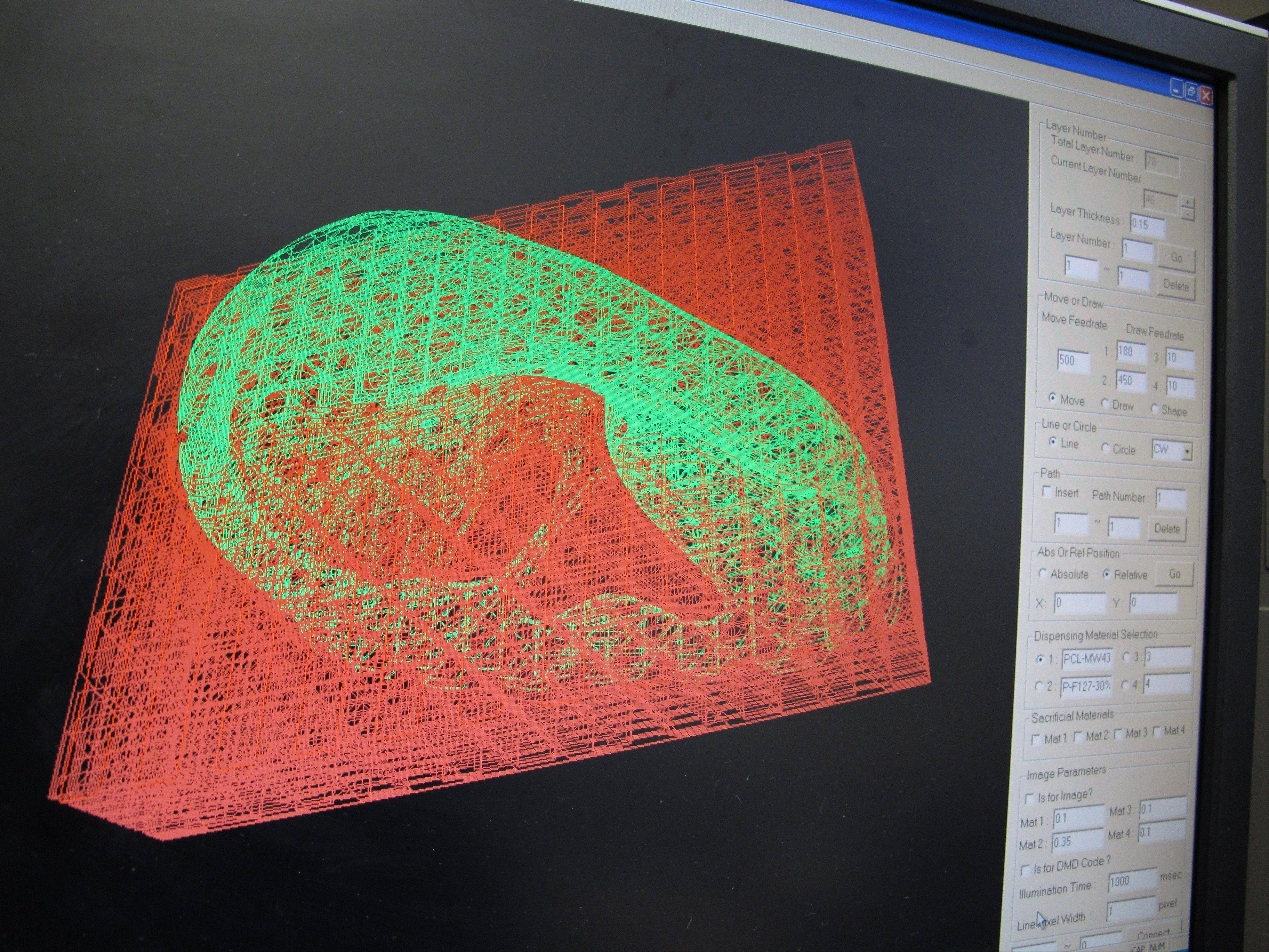 "A computer displays an image of the ""scaffolding"" for a human ear being created by a nearby printer."