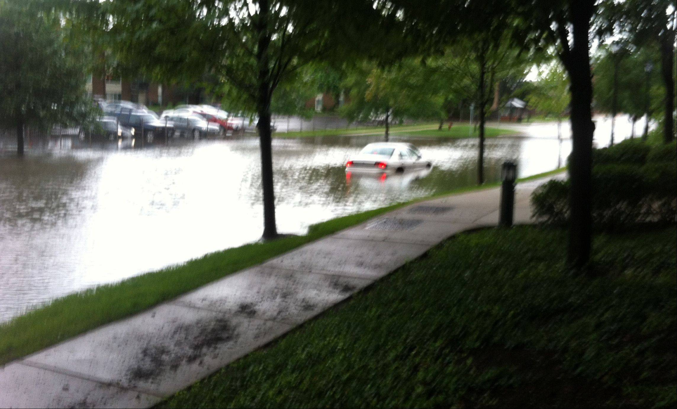A motorist deals with flooding in downtown Palatine Wednesday morning.