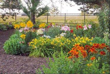 Annuals and perennials for both sun and shade are featured in the U of I Extension Master Gardeners in McHenry County Demonstration Garden at McHenry County College. The garden also features theme gardens and hardy plants for this region. It will be featured at the July 13 garden walk.