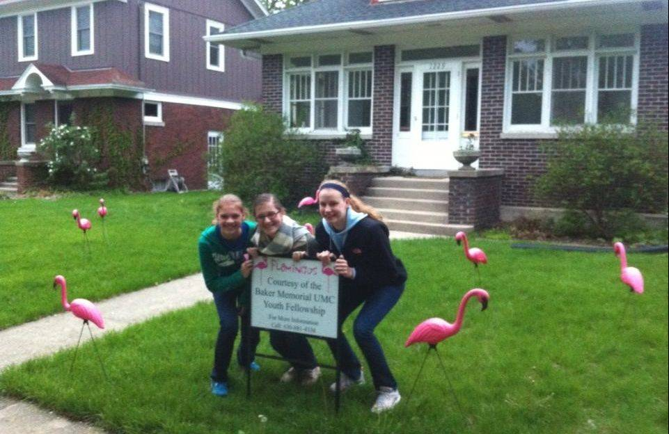 Youth from Baker Memorial United Methodist Church in St. Charles plant flamingos in a St. Charles lawn to raise money for a summer mission trip. People need not be connected with the church to order up a flamingo surprise.
