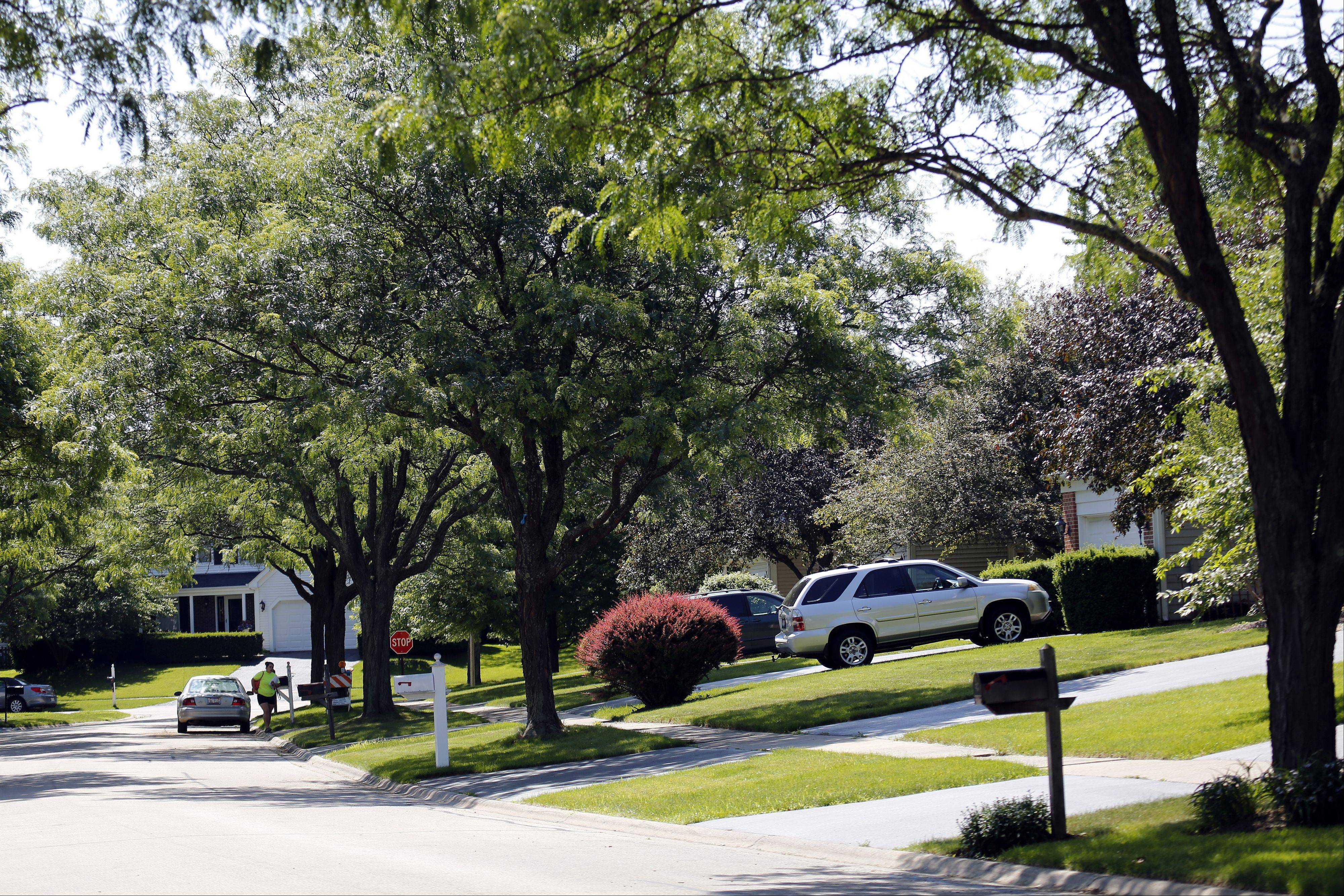 This view along Thackeray Lane shows the tree-lined streets found in Fox River Grove�s Foxmoor neighborhood.