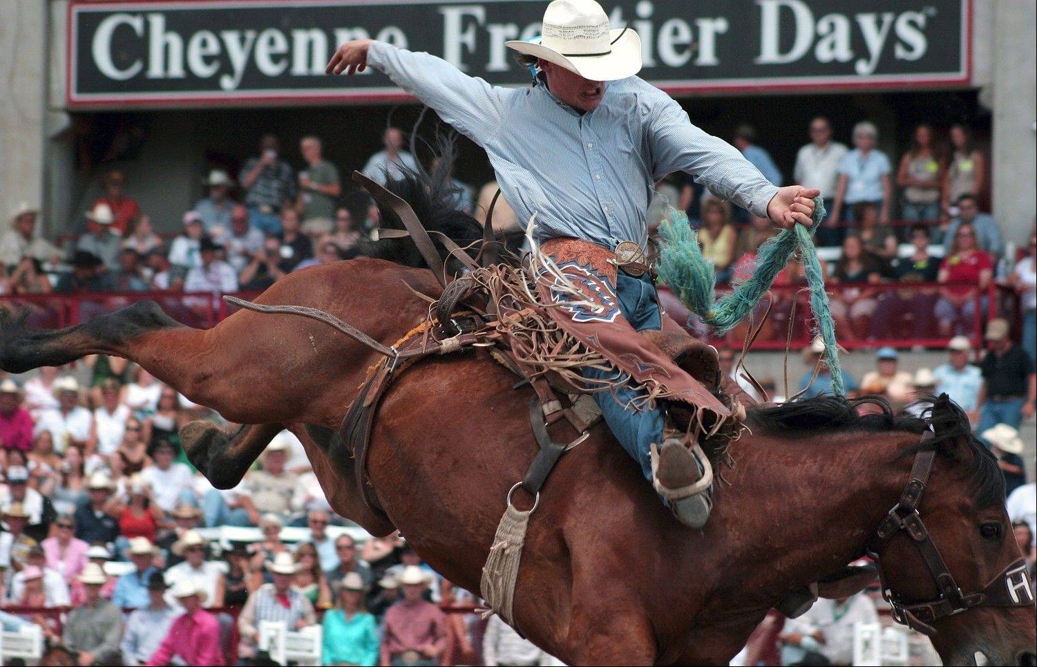 Bucking broncs are just one of the thrilling rodeo events during Cheyenne Frontier Days.