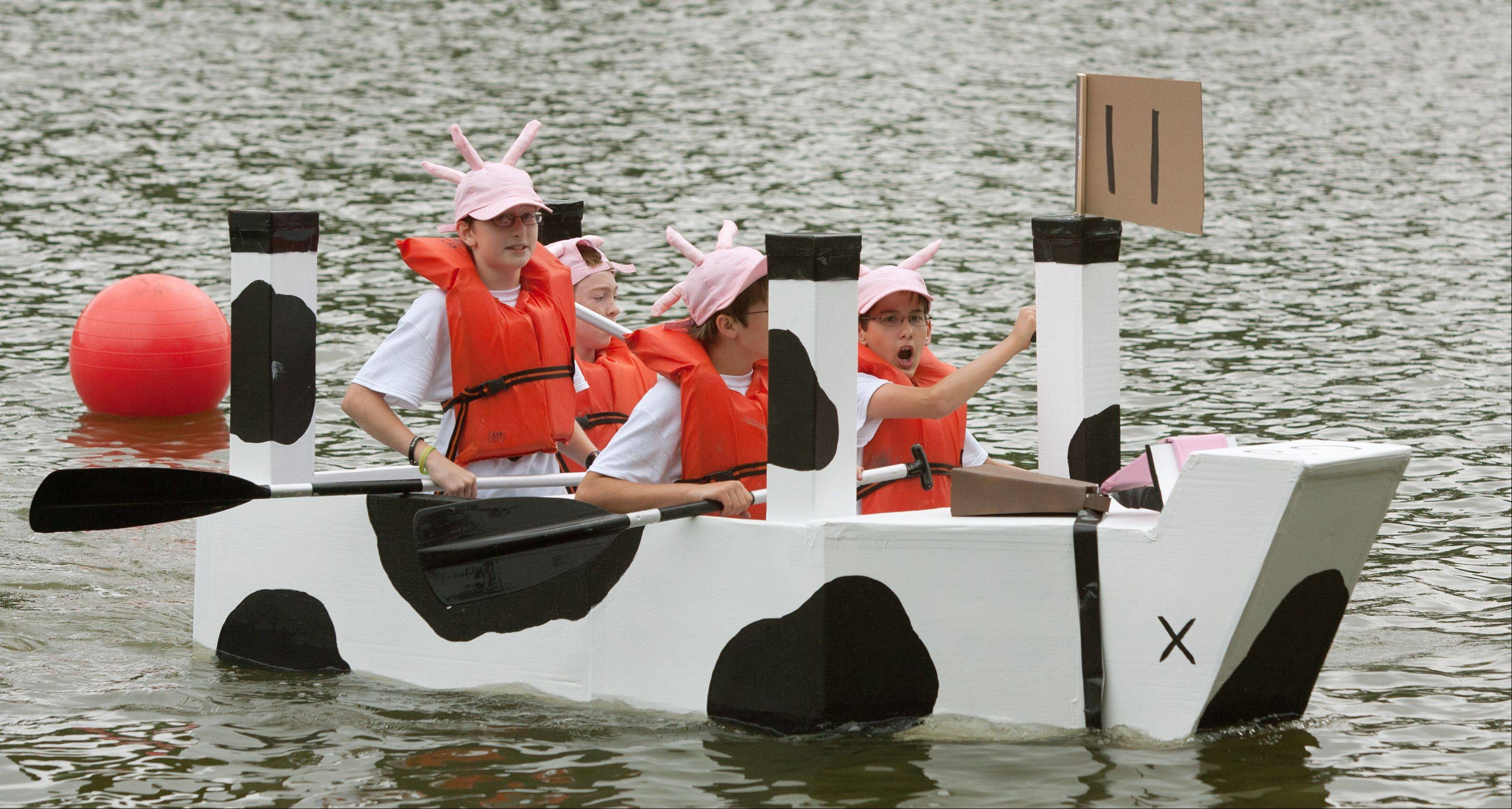 The boat Dead Cow wins its heat during the Glen Ellyn Park District's 20th annual Lake Ellyn Cardboard Regatta at Lake Ellyn. Paddlers David Messerschmidt, Matt Hoerster, Tyler Jackson and Kevin Condon steered their way to victory.