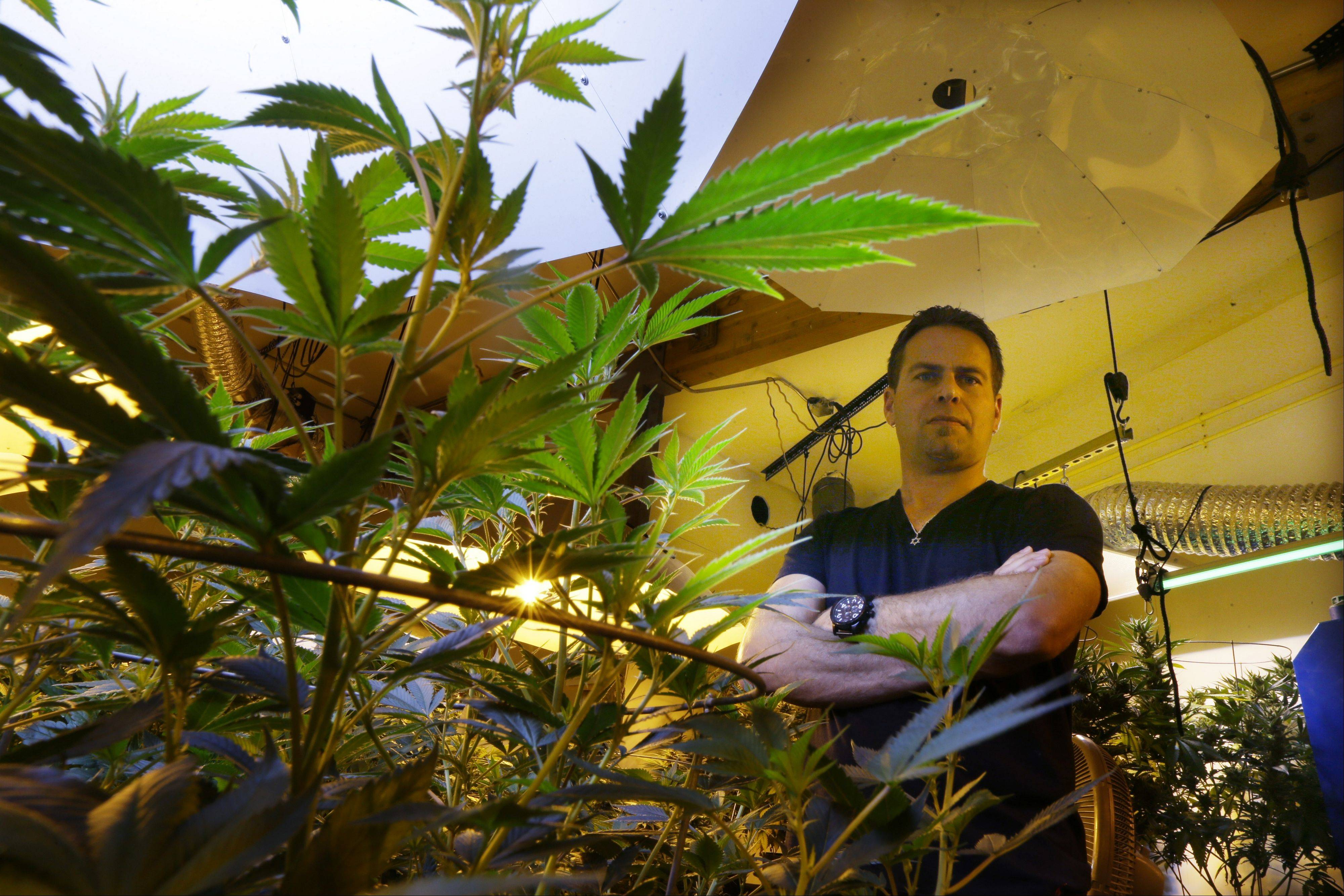 Brent Miller posing for a photo in one of the grow rooms of his medical marijuana grow operation in Seattle.