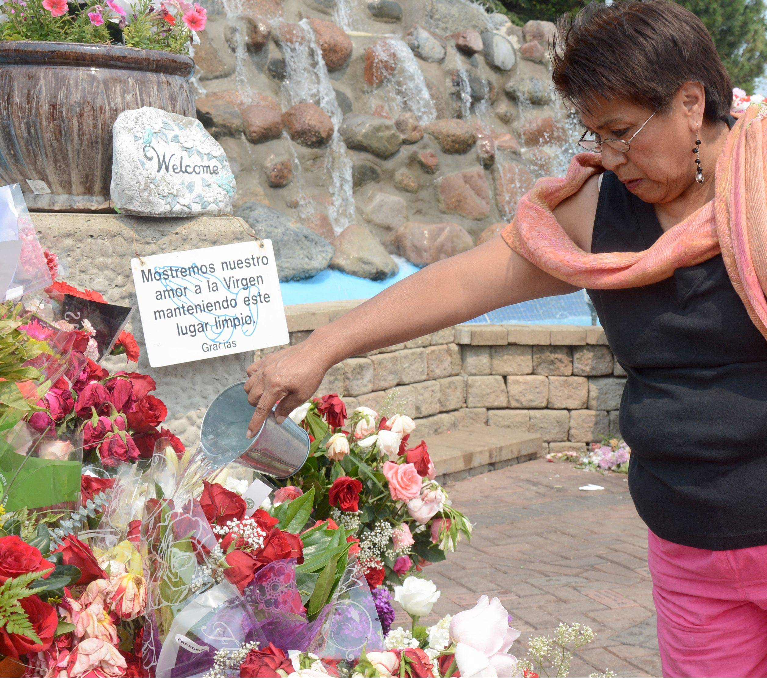 Juana Ocompo of Chicago waters flowers Monday at the Our Lady of Guadalupe Shrine in Des Plaines. The Founding Committee of the Des Plaines Our Lady of Guadalupe Shrine announced Monday they're launching a campaign to build a basilica at the site.