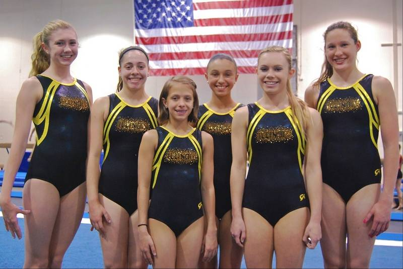 level 6 gymnastics state meet qualifying score