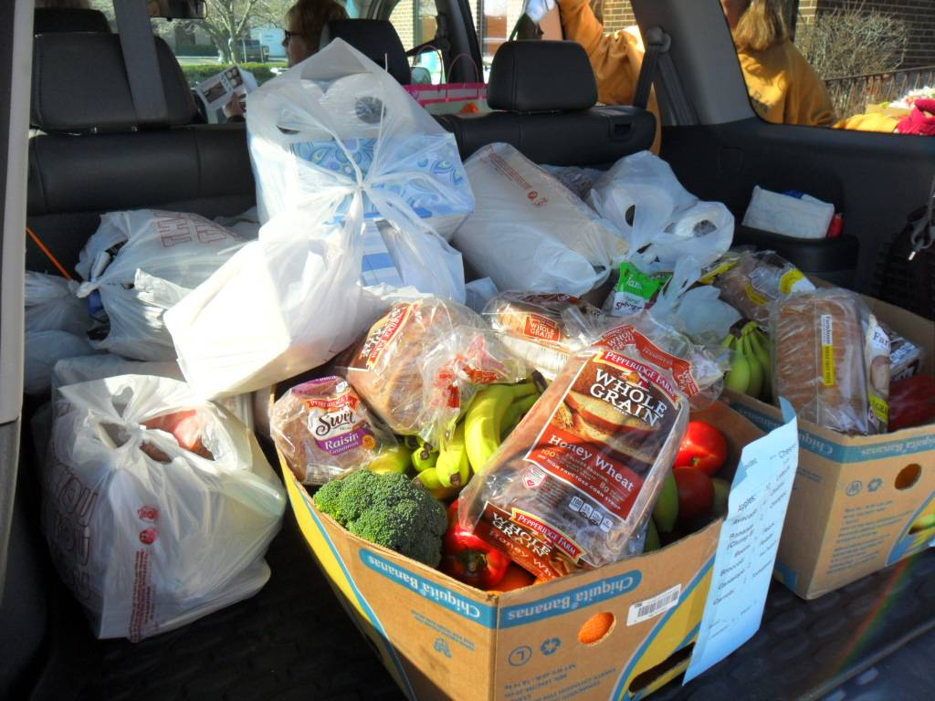 Groceries for the Senior Citizen Project