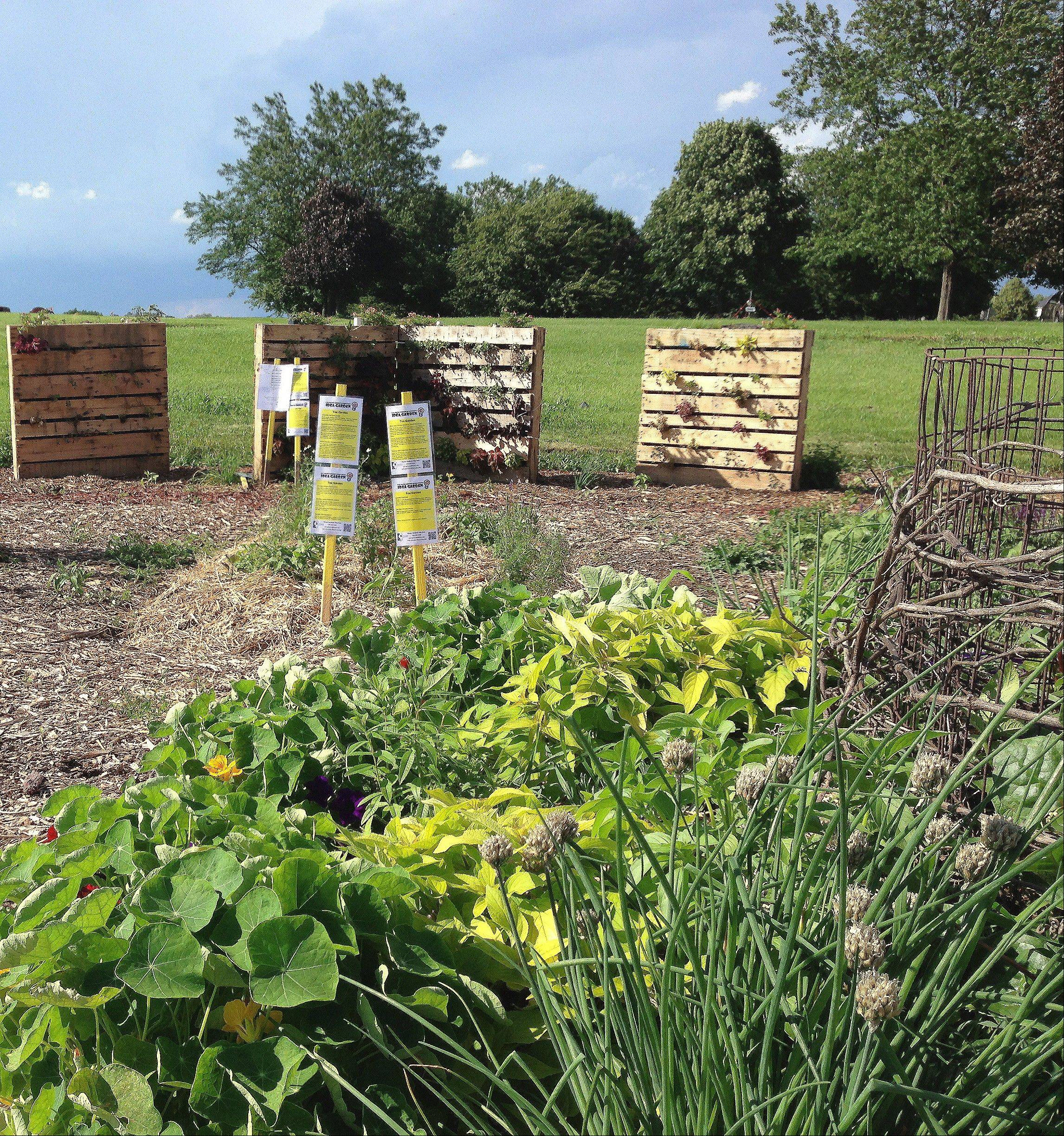 Stop by the Master Gardeners' Idea Garden, featuring eight different garden beds with techniques that can be easily replicated in your backyard. New this year is a vertical garden created out of recycled wooden pallets and a compost bin created with straw bales.