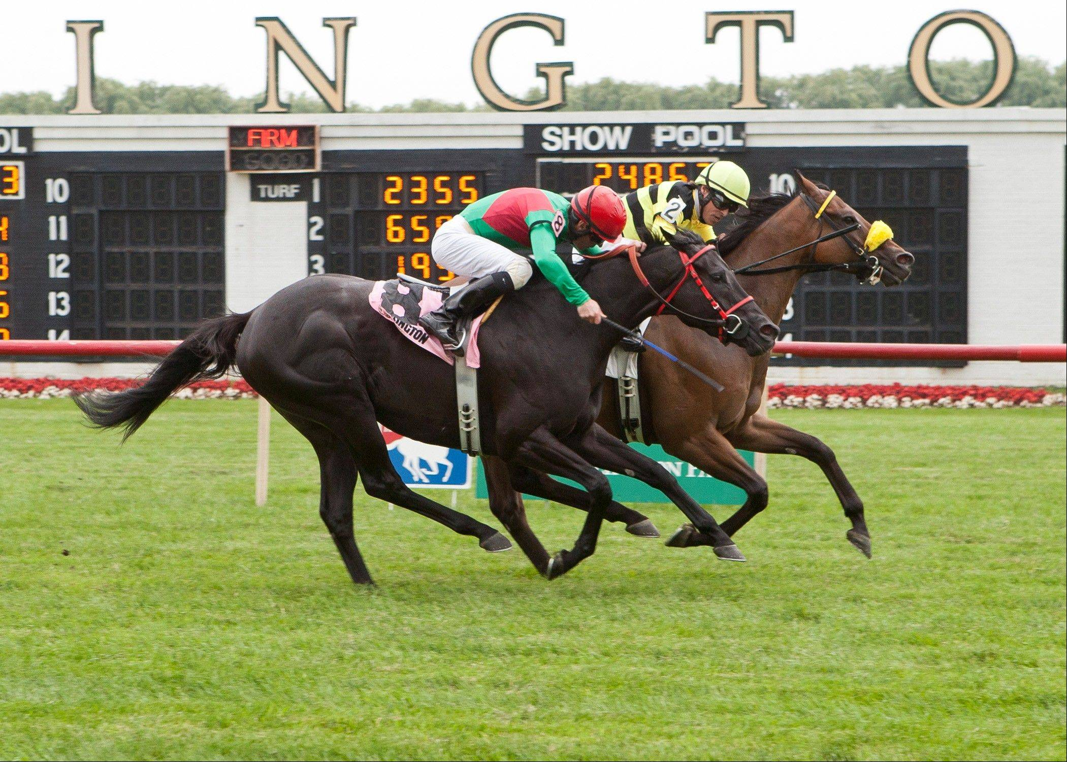 With jockey E.T. Baird aboard, Saint Leon wins Saturday's Arlington Sprint at Arlington Park.