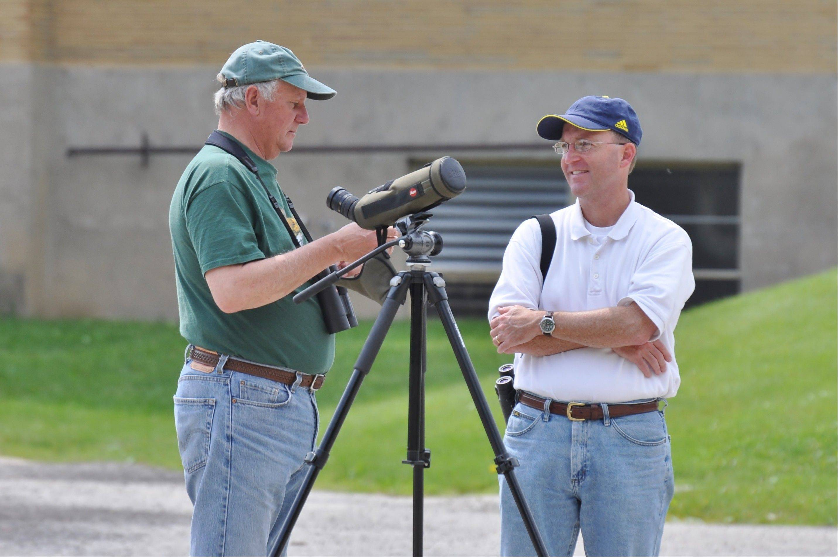 Jeff Reiter, right, met up with birder Dan Williams in Rockford recently to spot a Mississippi kite, several of which are nesting near a school in Rockford.