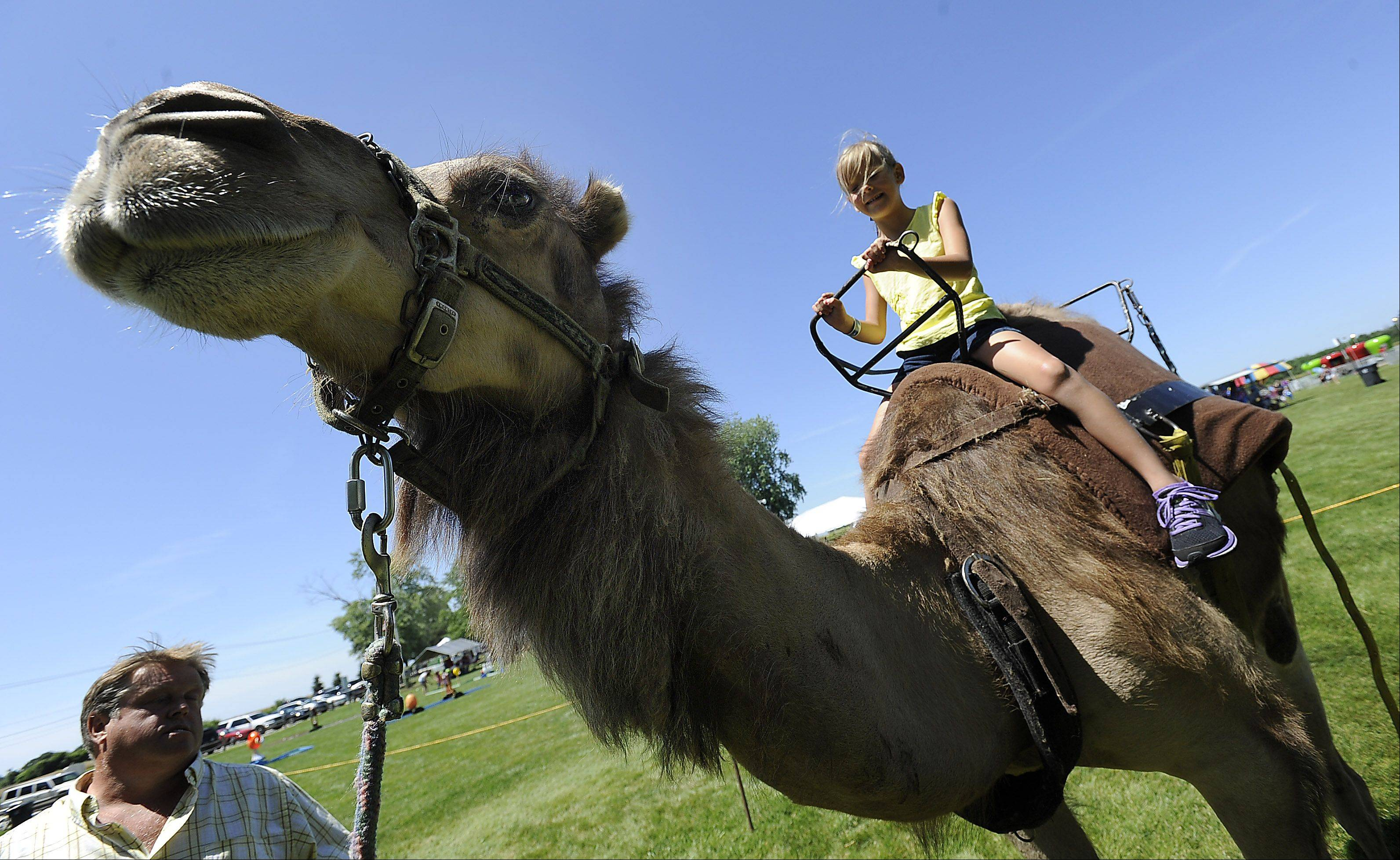 Georgia Killian, 6, of Dallas, Texas, flew on a plane to Chicago by herself to visit her grandparents in Gurnee and ended up riding a camel named Charley at the Grandwood Park Summerfest on Saturday.