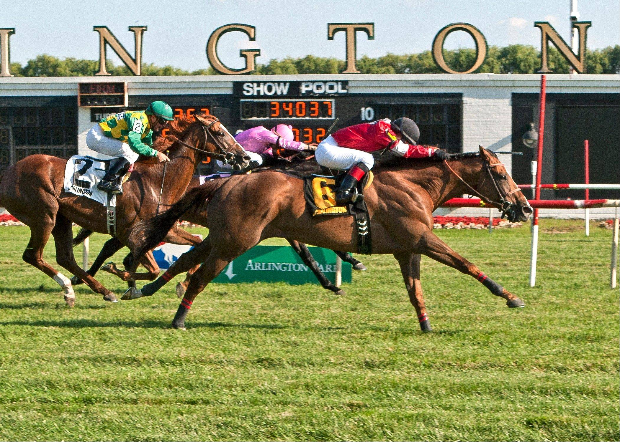 Jockey Rosie Napravnik guides Rahystrada to victory in the Arlington Handicap at Arlington Park on Saturday.