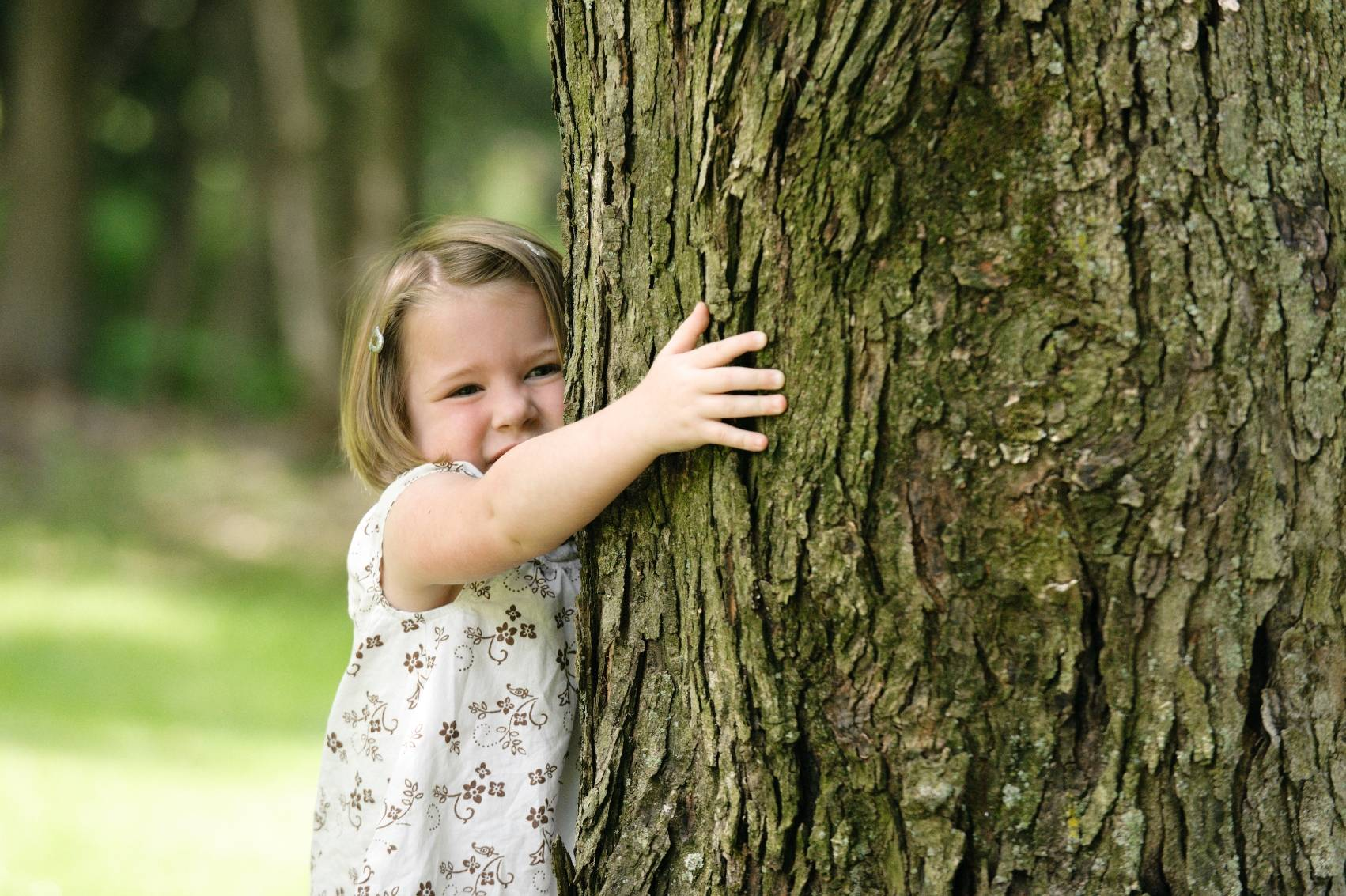 Trees save lives, improve curb value, and decrease violence. Share the love, and hug a tree.