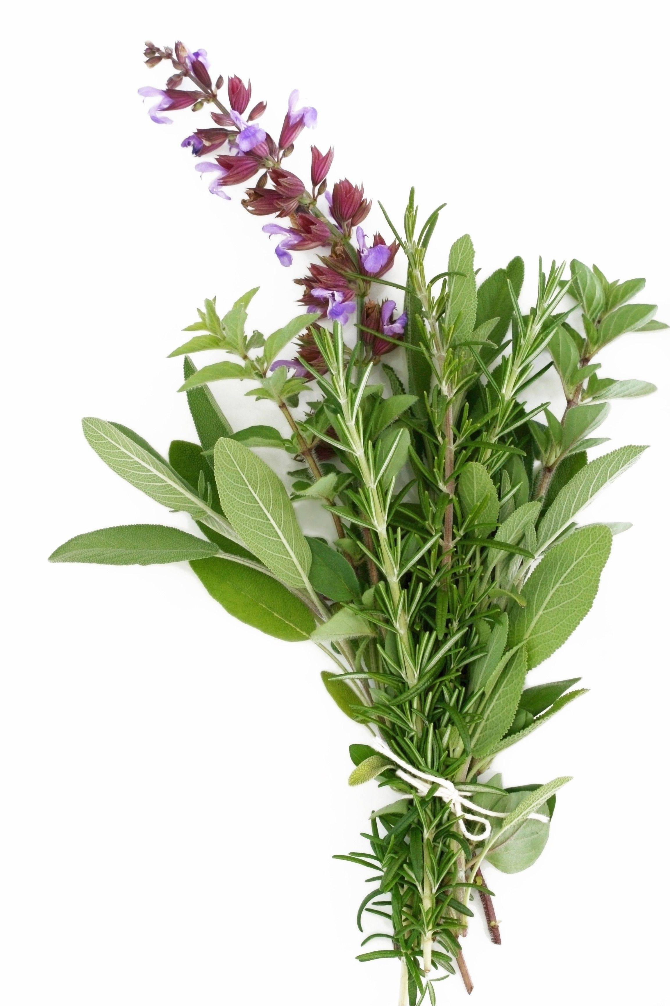 A bouquet garni of fresh rosemary, flowering sage and oregano.