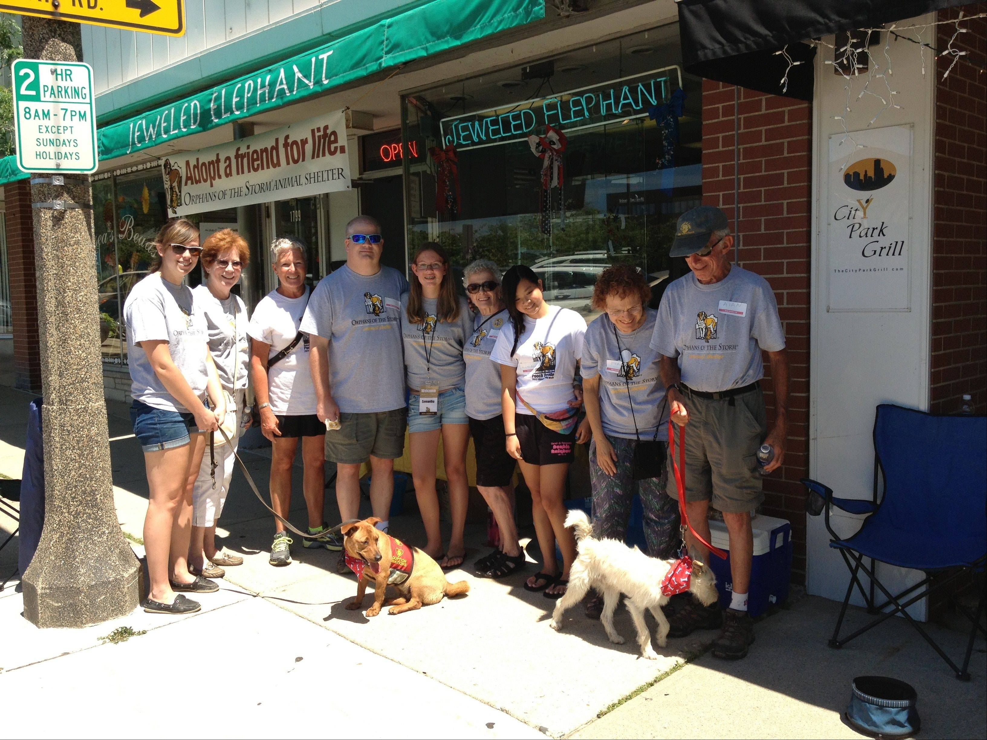 Orphans of the Storm volunteers in Highland Park for the Big Dog Show adoption walk.