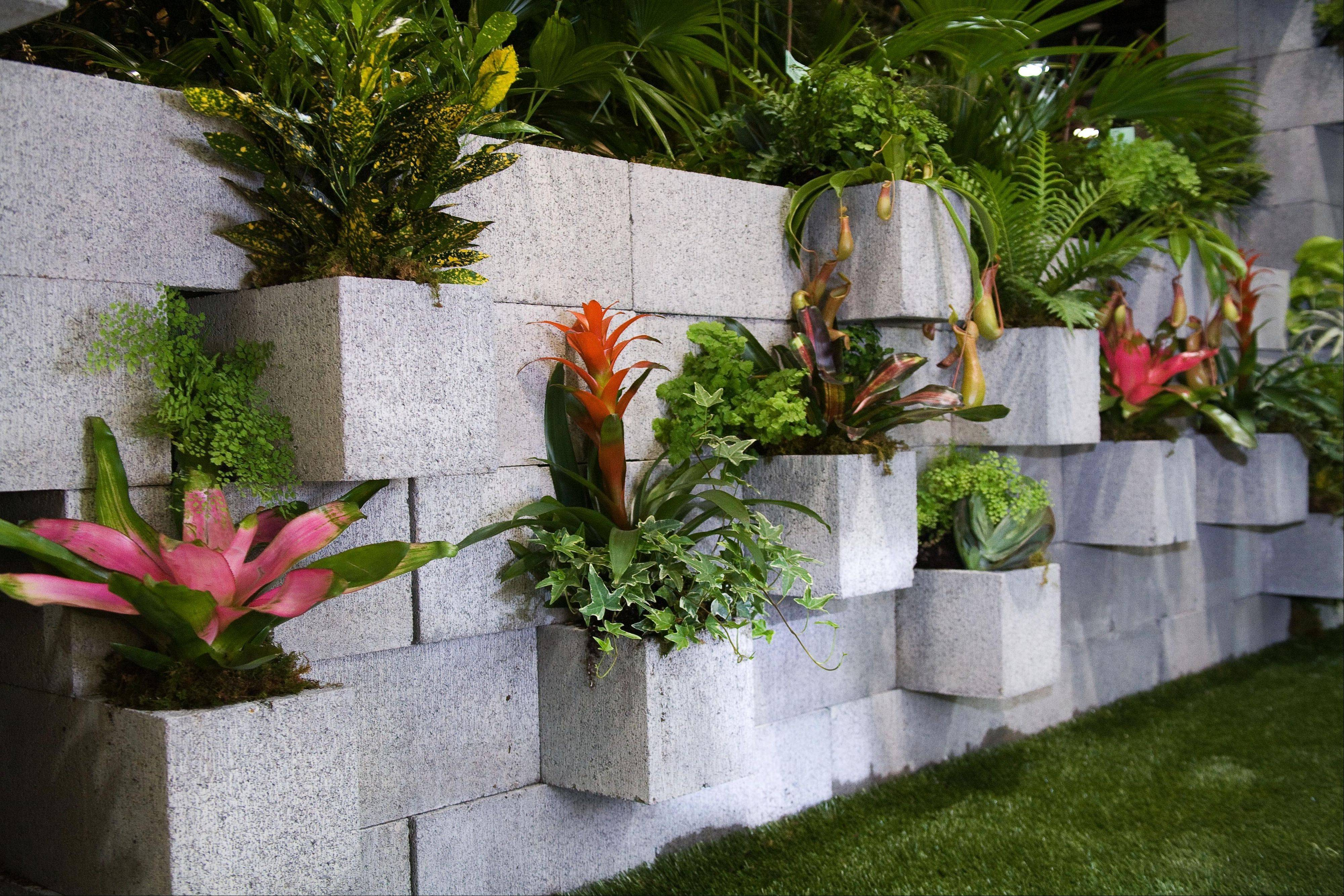 "In this publicity photo provided by Chris H. Olsen, the Landscape Designer, Olsen, of Little Rock, Ark., created a decorative wall out of concrete blocks planted with ivy and tropical plants. Cement couches, benches and tables also can be made by stacking concrete blocks. ìYou don't even have to mortar it, î he says. Olsen shares more outdoor decorating ideas in his book ""Chris H. Olsen's Five Seasons"" (Leisure Arts, 2011)."