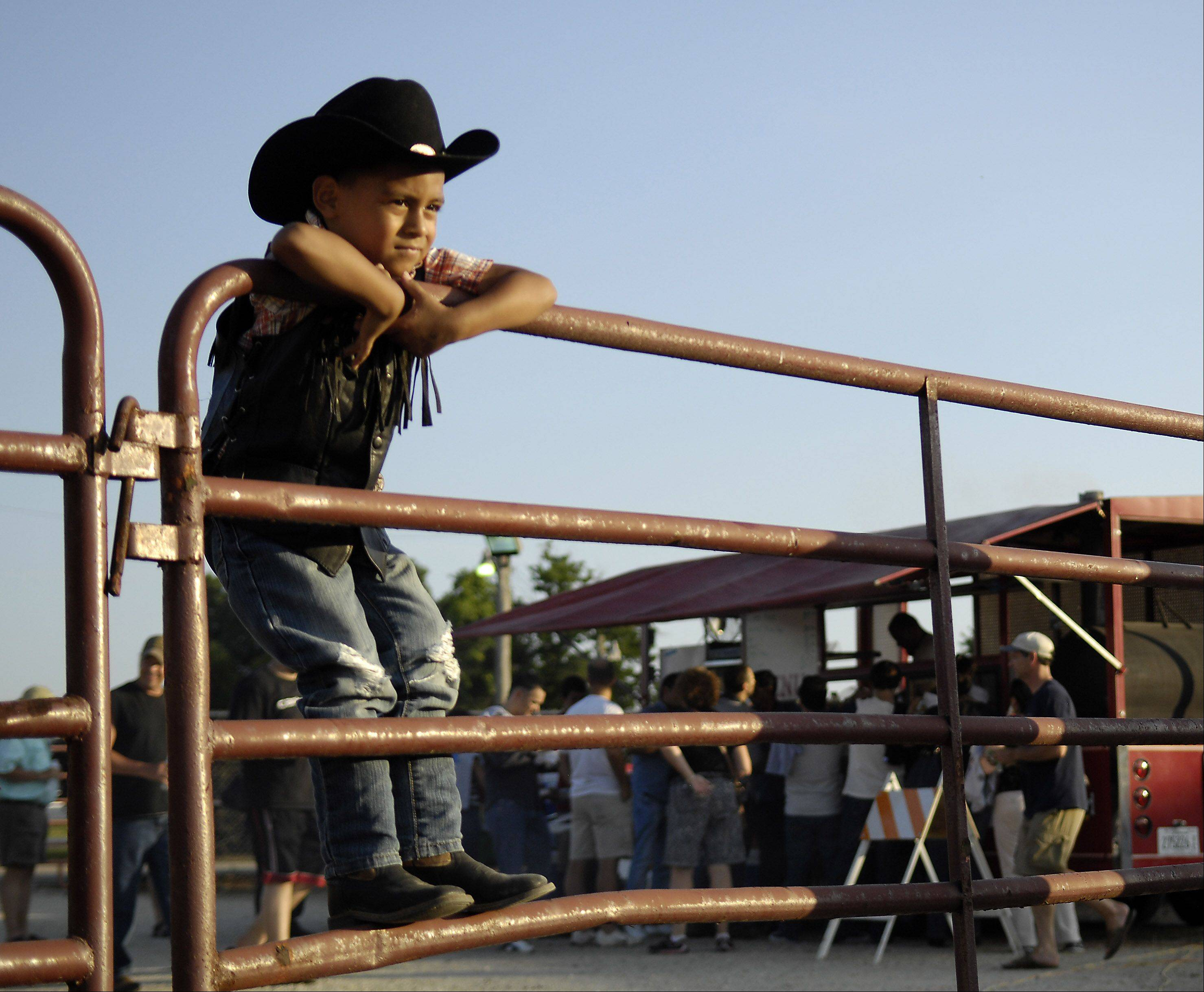 Angel Caro, 5, of Cicero tries to get a good look at the bulls before the Championship Bull Riding action at the Kane County Fair on Friday.