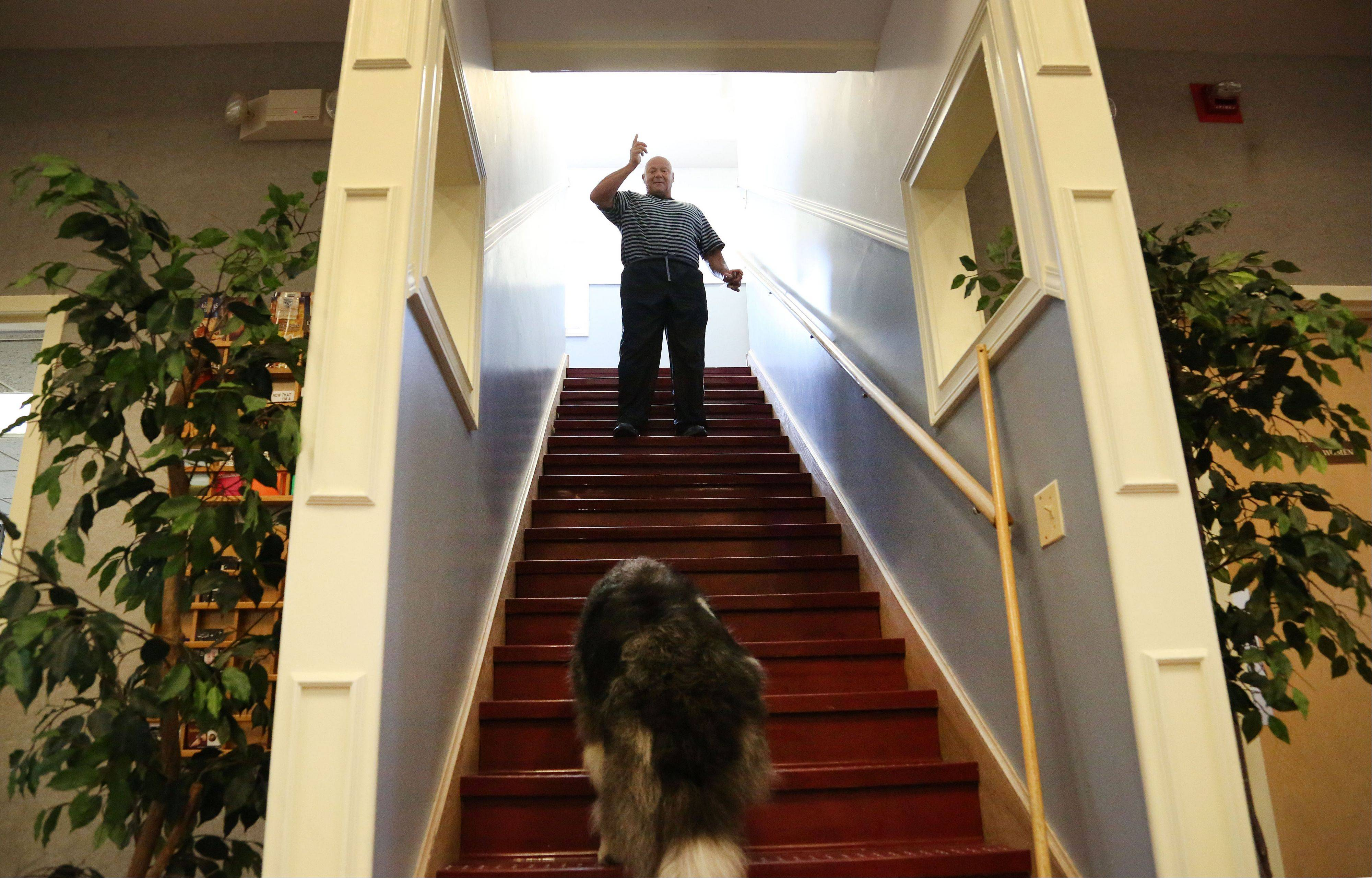 During training, Alex Rothacker guides Swee' Pea up a flight of stairs with a glass balanced on her nose.