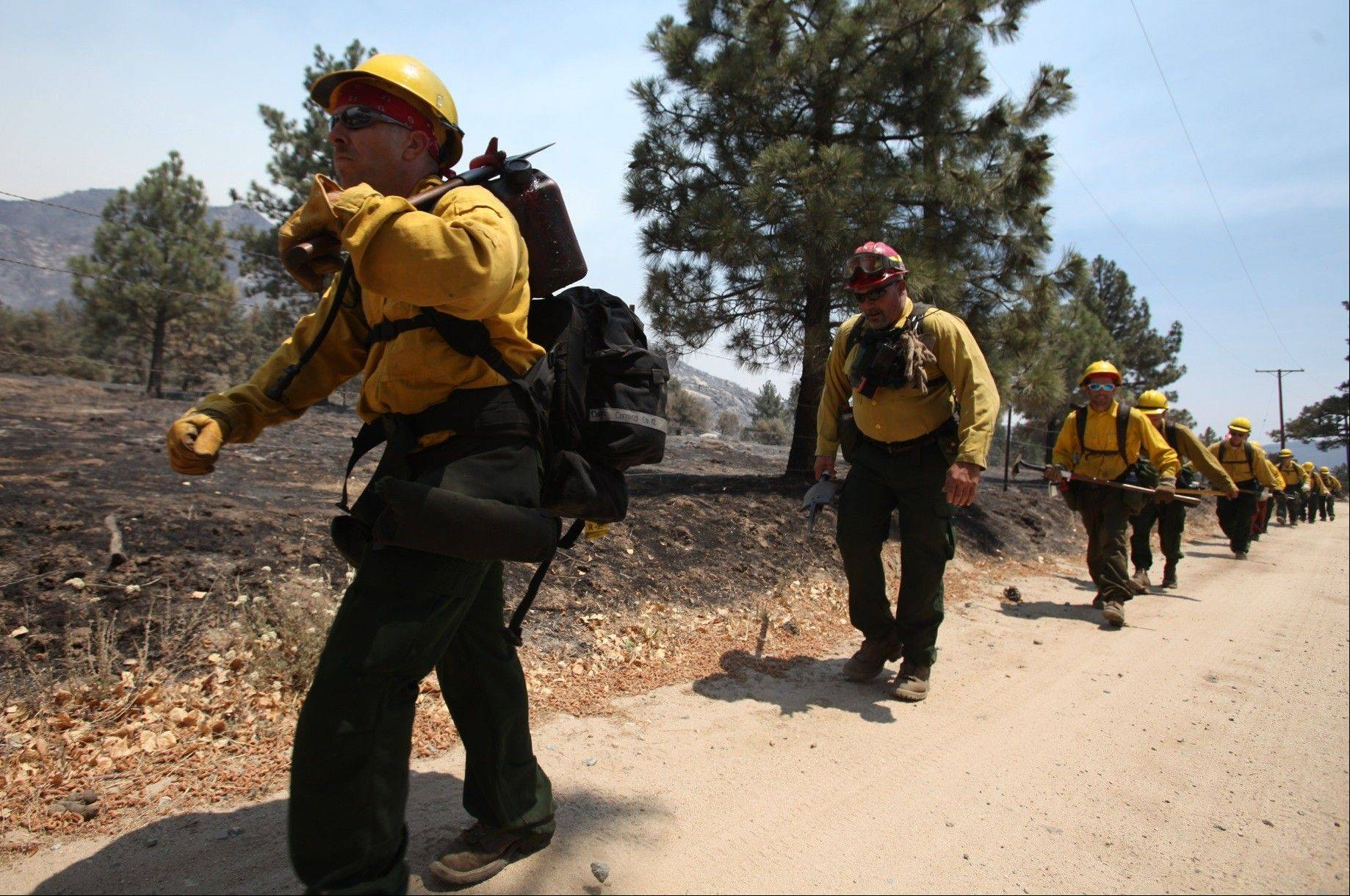 Members of the Mountaineer Fire Crews from Northern California start their hike near Pine Springs Ranch in Mountain Center, Calif. to fight the Mountain Fire Thursday, July 18, 2013.